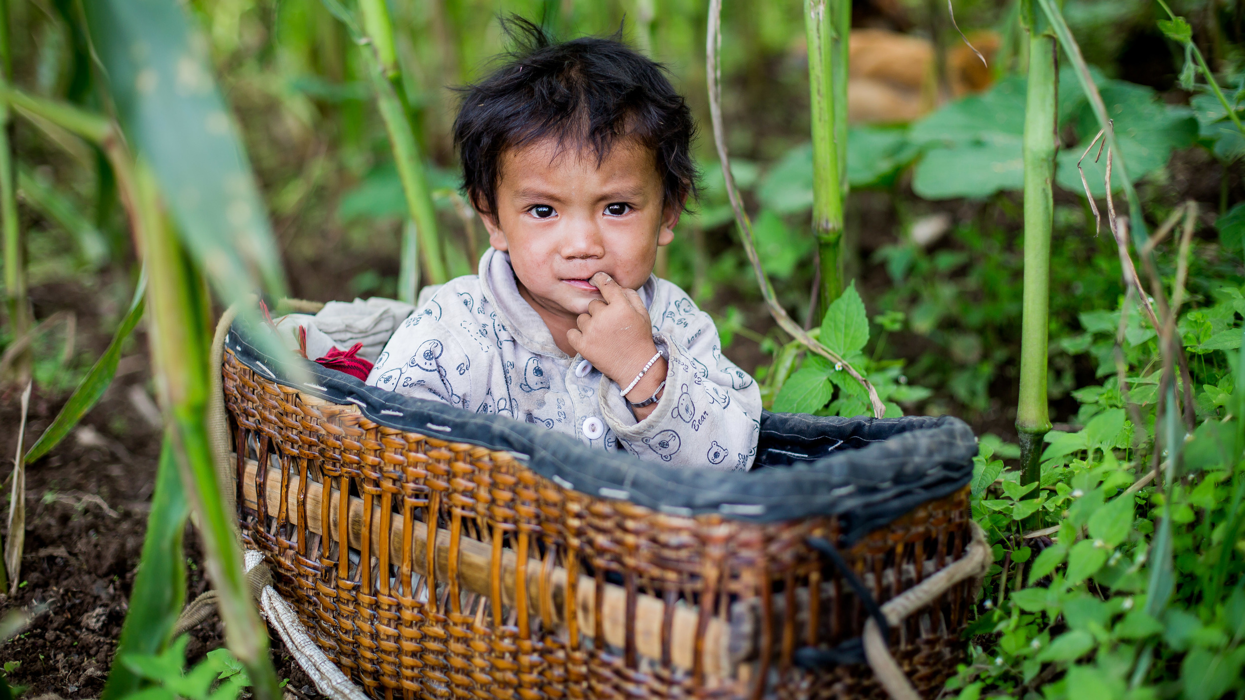 Baby in his basket beside his mother who is working in the field.