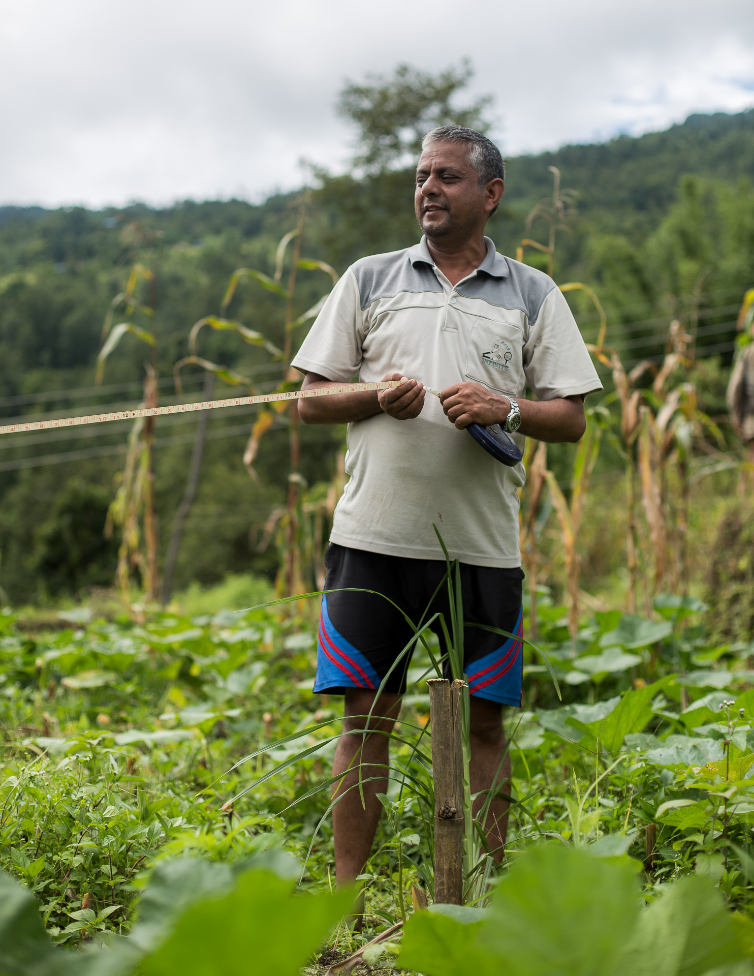 Rohit's uncle measuring up for a new greenhouse.