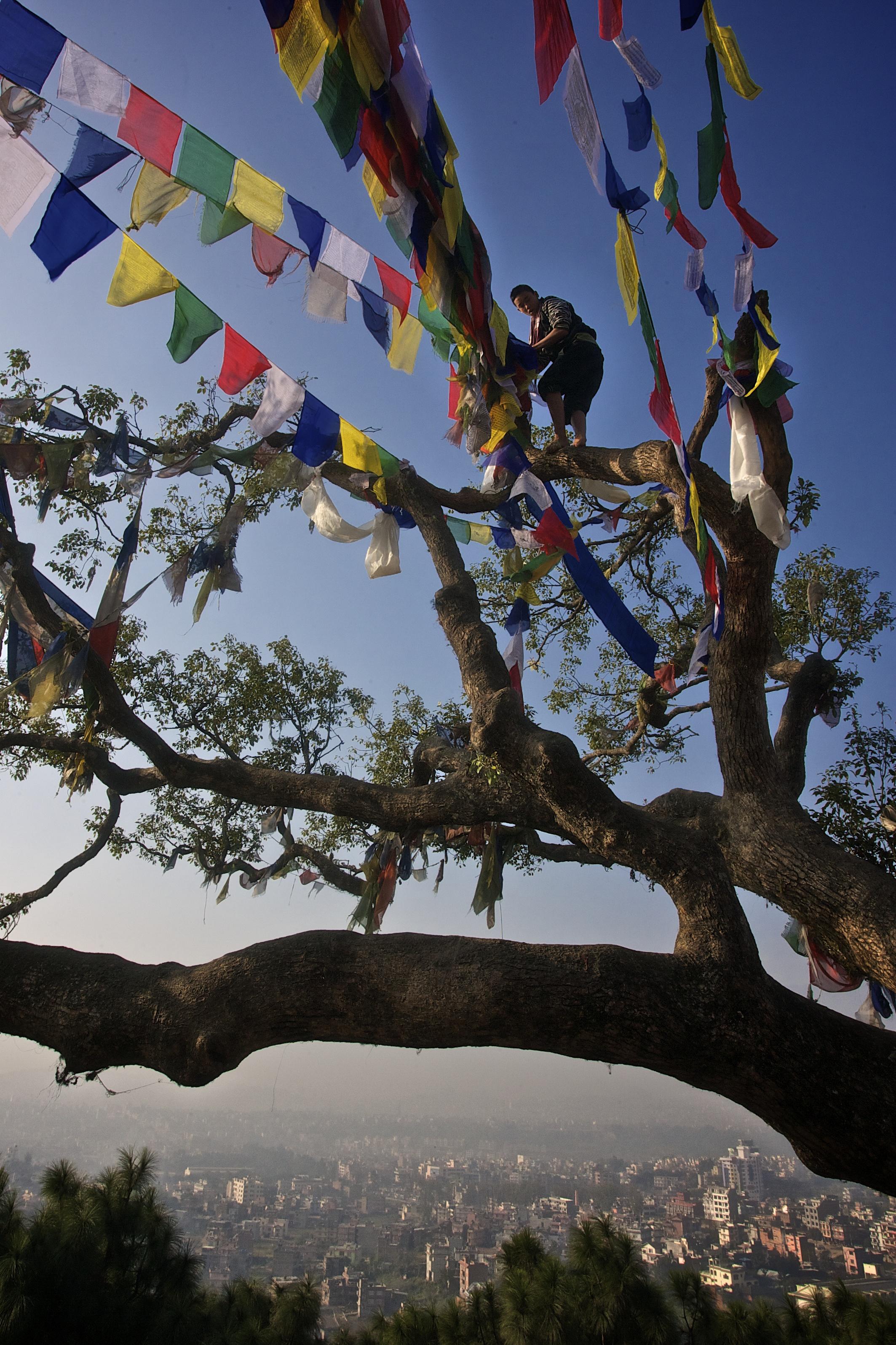 Boeddhistische gebedsvlaggen op het Swayambhunath tempel complex.