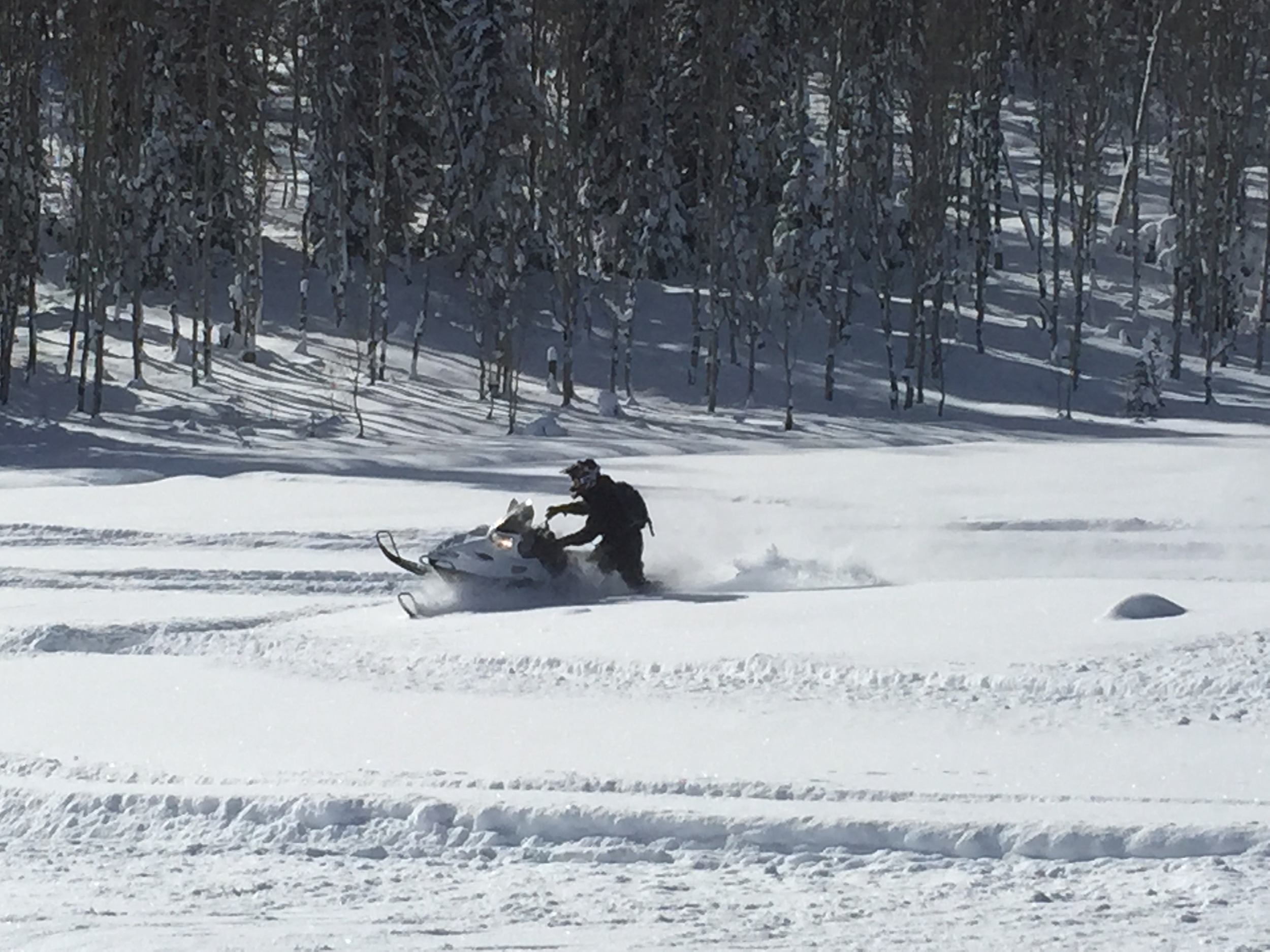far snowmobile.JPG
