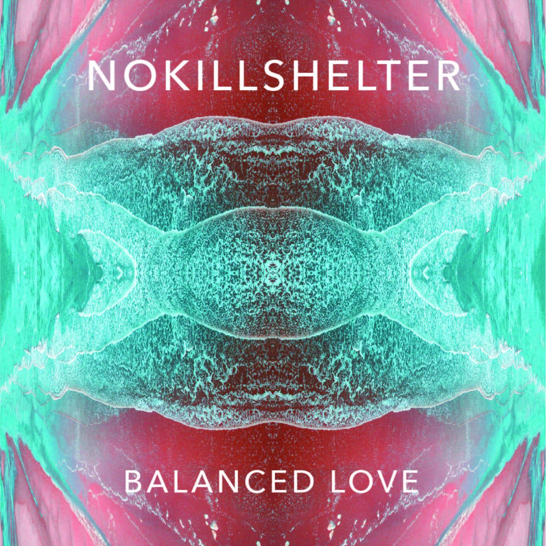 nokillshelter cover art.jpg