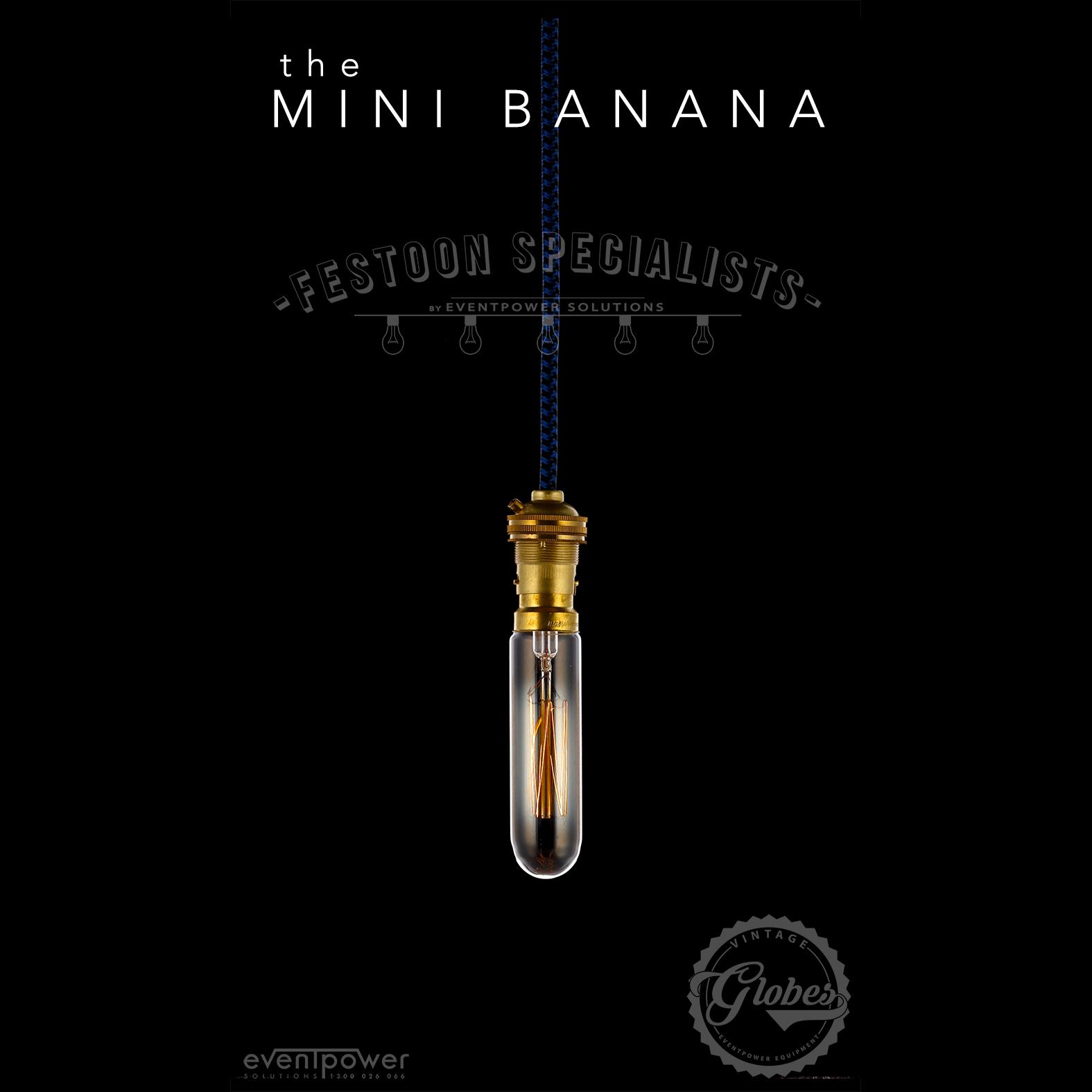 Festoon_Specialists-Mini_Banana.jpg