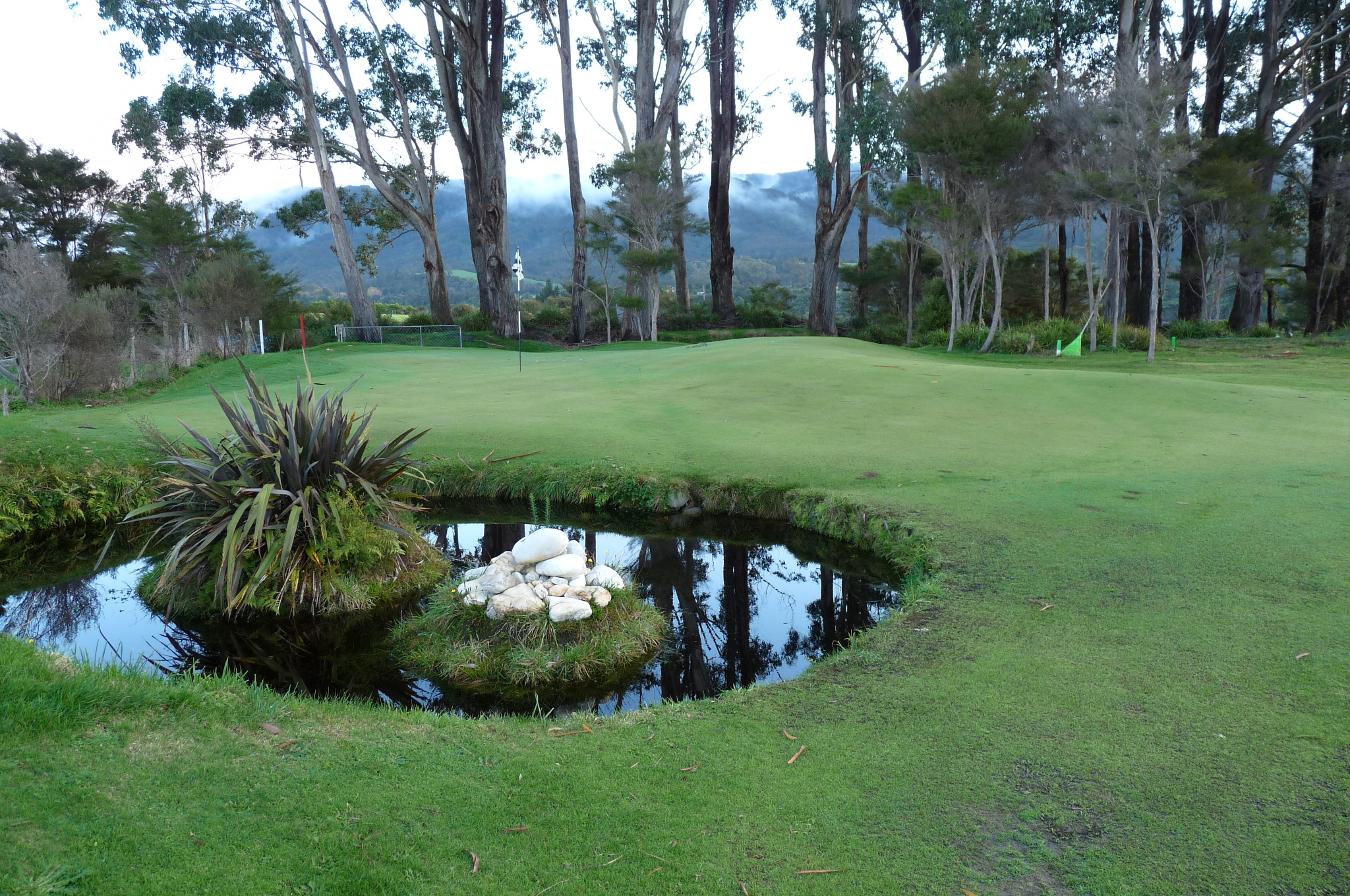 Pond fronts left of green