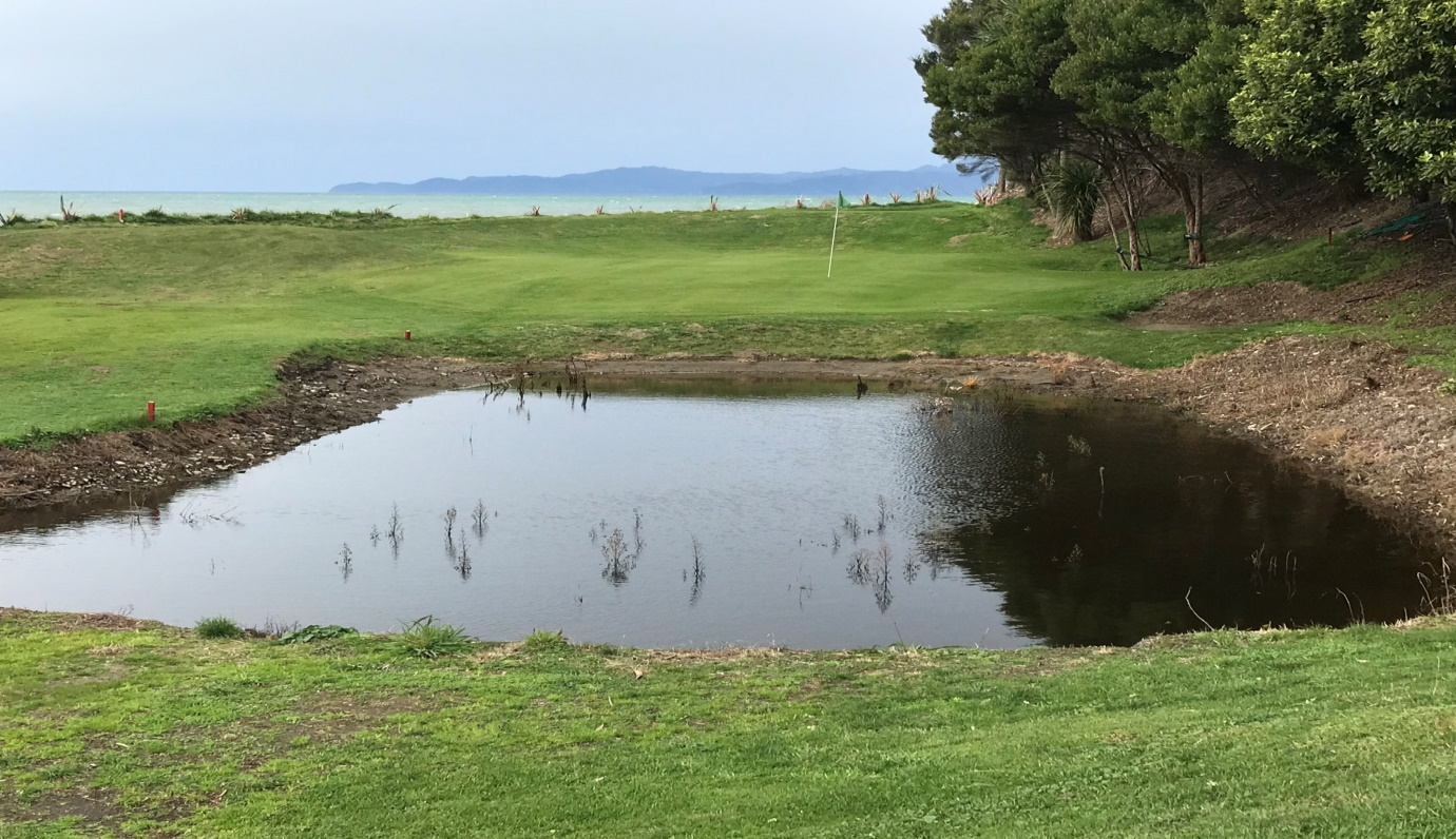 Quite a new pond but already being populated by visitor's golf balls.