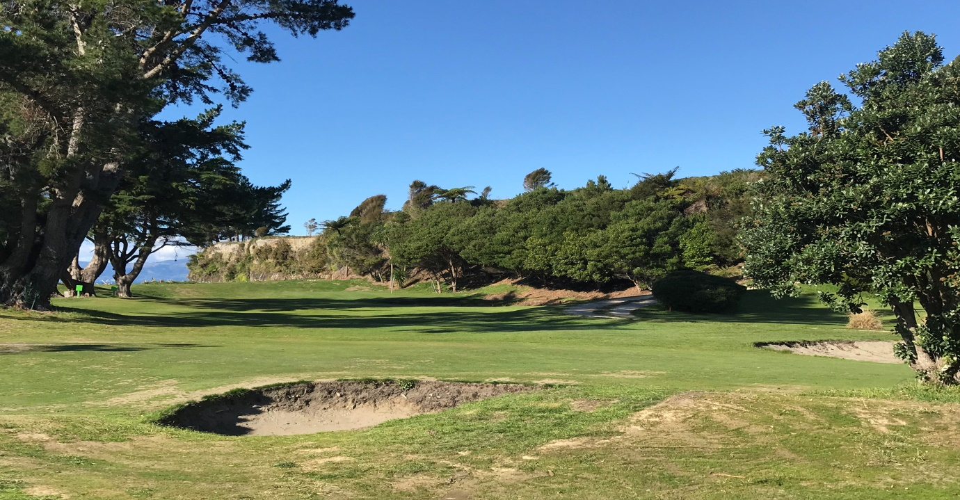 View  from the tee – the ideal line is over the punga fern on the cliff edge