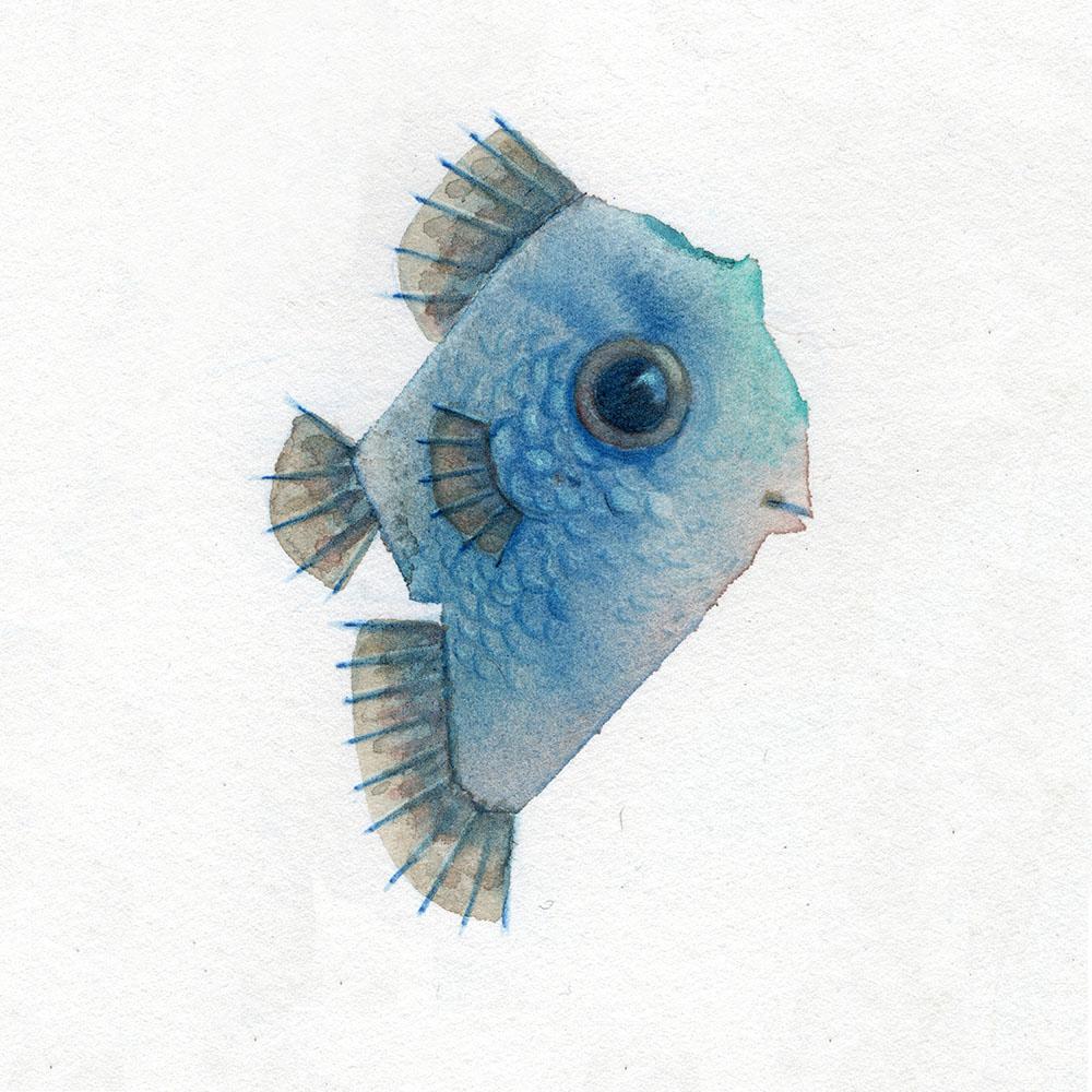 fishy_small.jpg