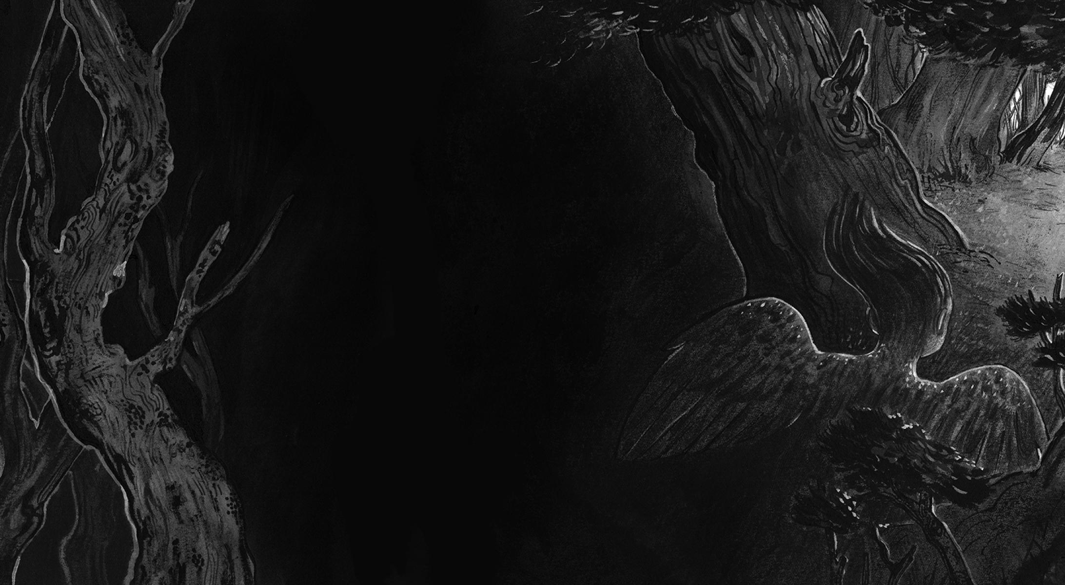 Harpyforwebv2_06.jpg