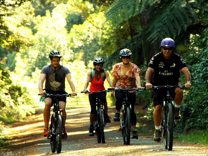 The Remutaka Incline Trail, Cycle Remutaka
