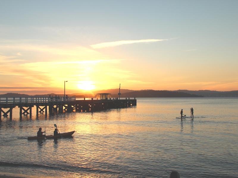 Kayaks at The Boatshed - Days Bay