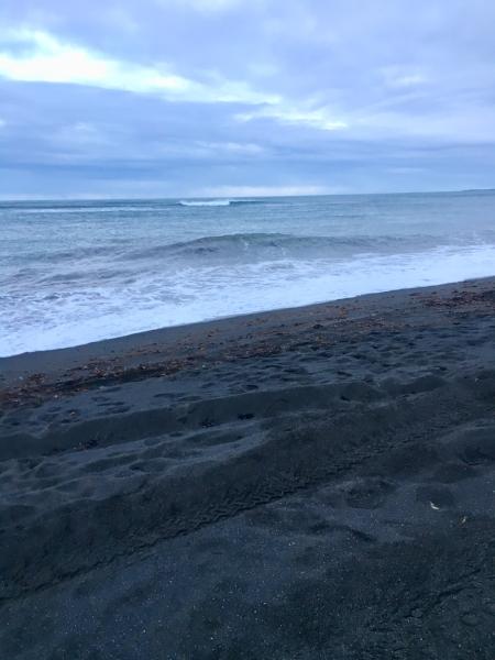The black sand beach at Ölfus