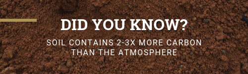 DID YOU KNOW_ Soil.png
