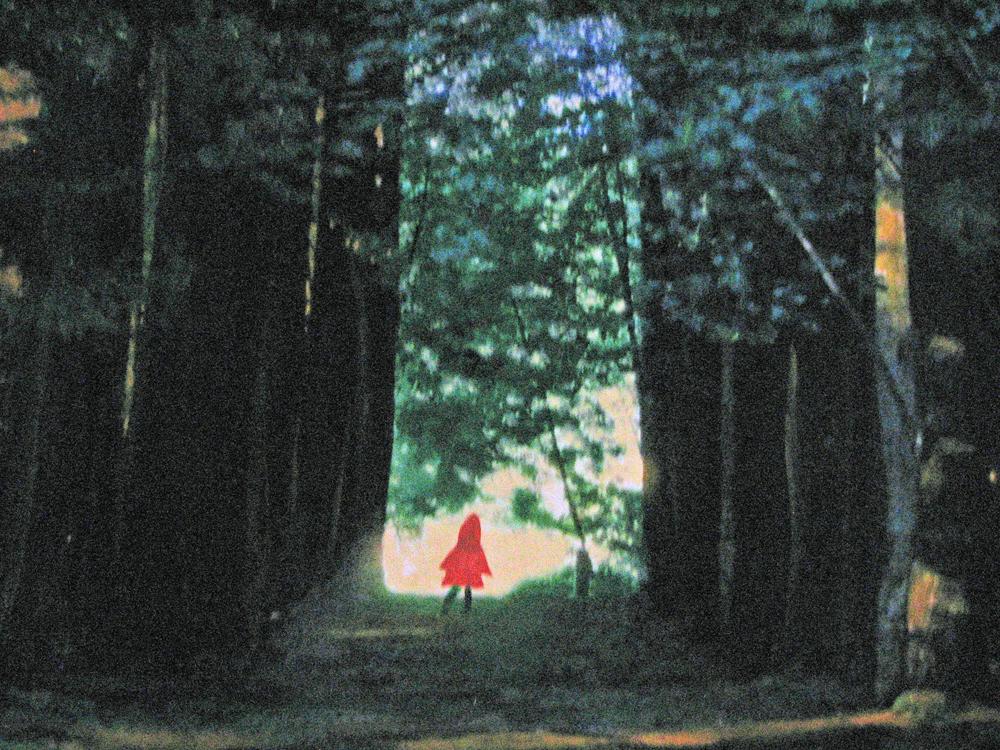 Hoodie in the Woodie -- 18 x 22 Framed -- 400
