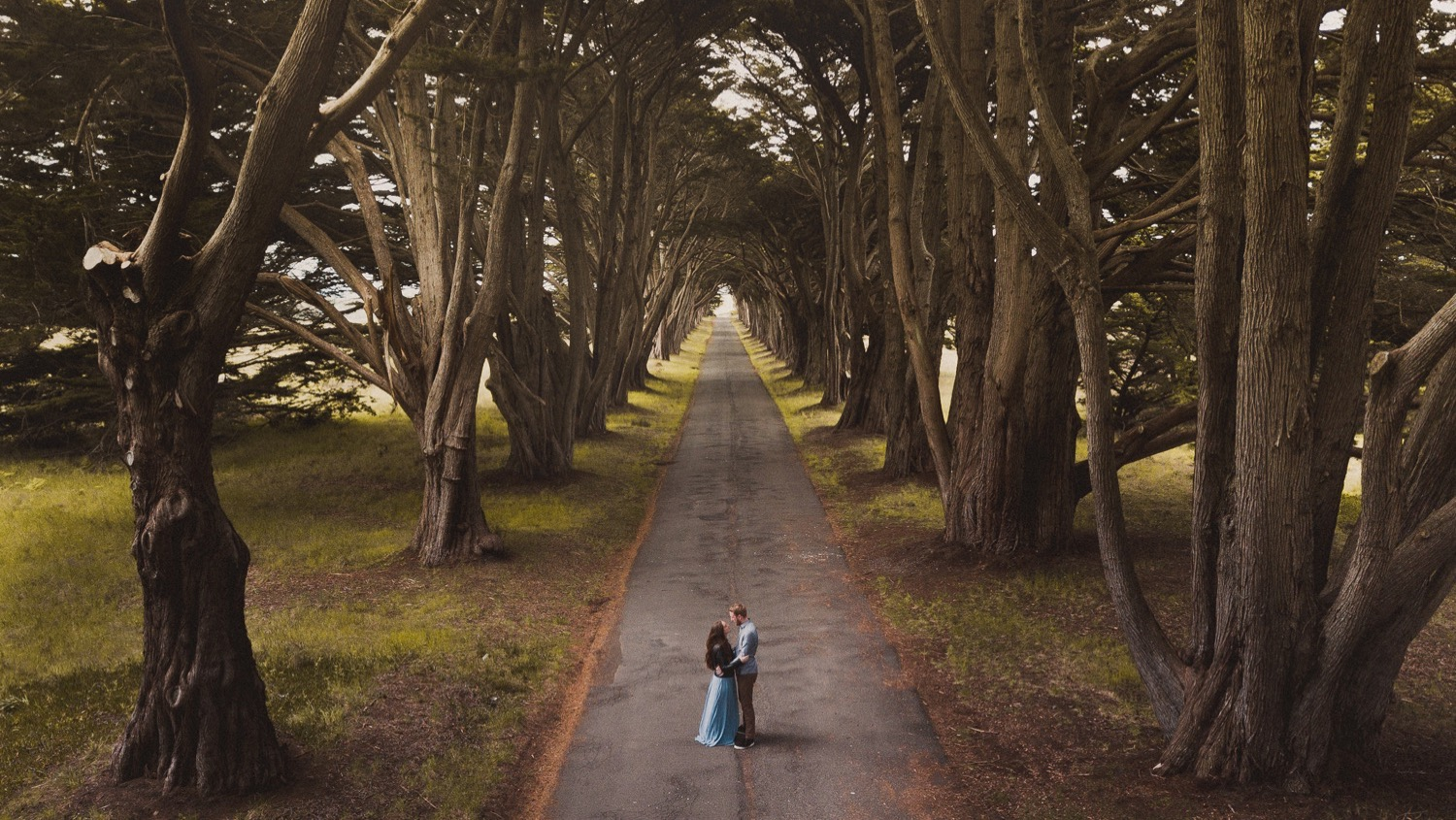 02_Engagement_Session_Cypress_Monterey_Tree_Tunnel.jpg