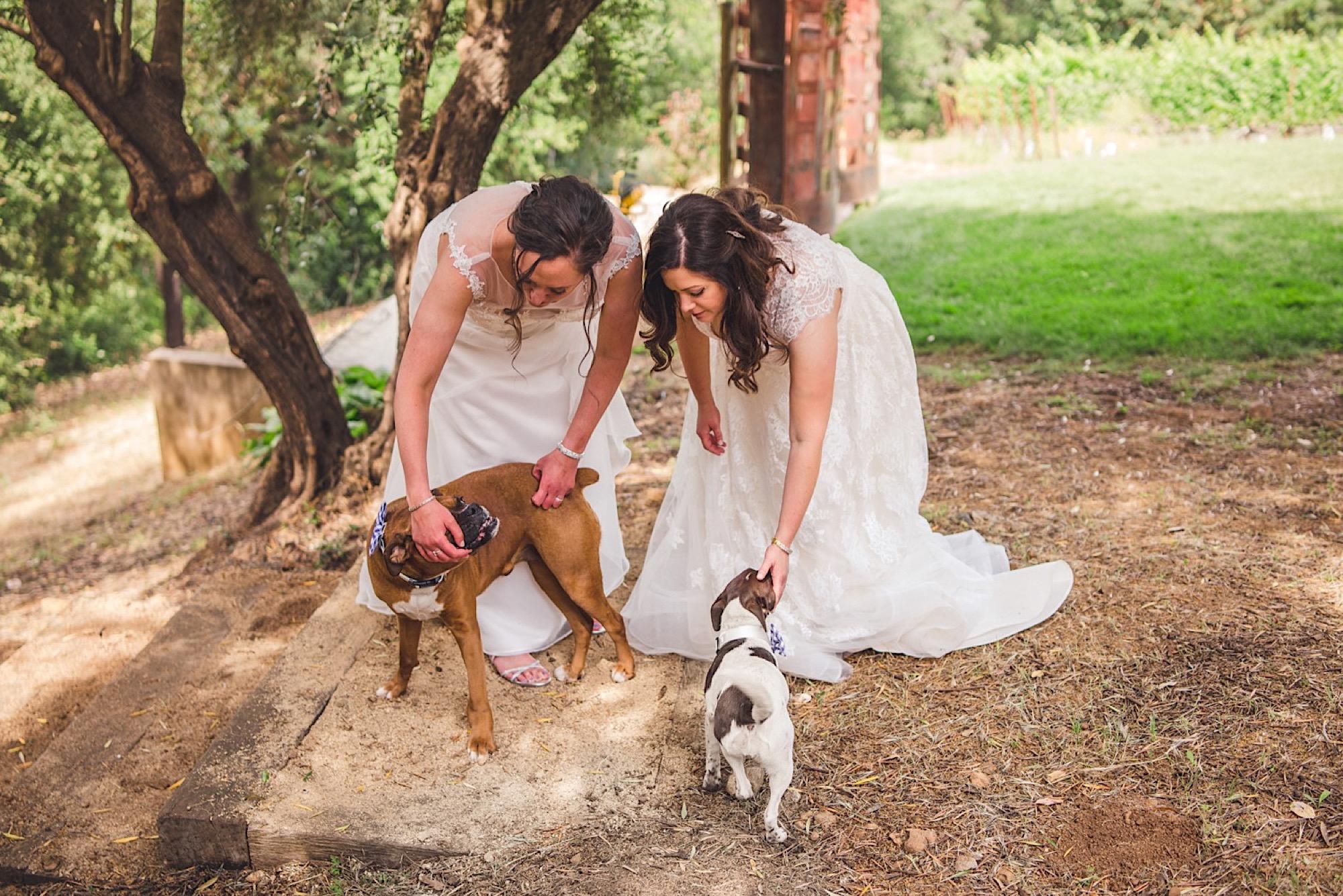 11_wedding_Napa.jpg