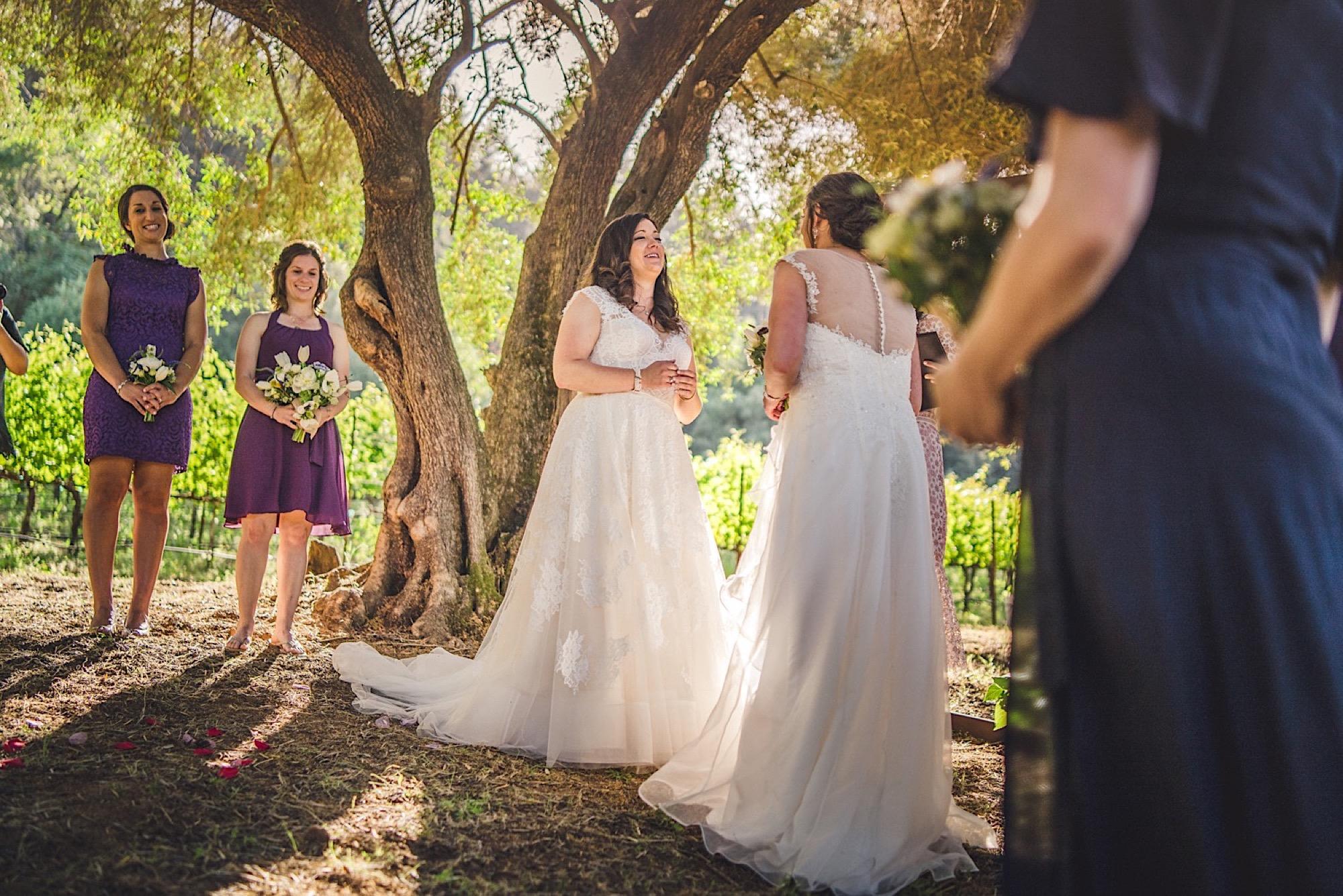 23_gay_Napa_in_wedding.jpg