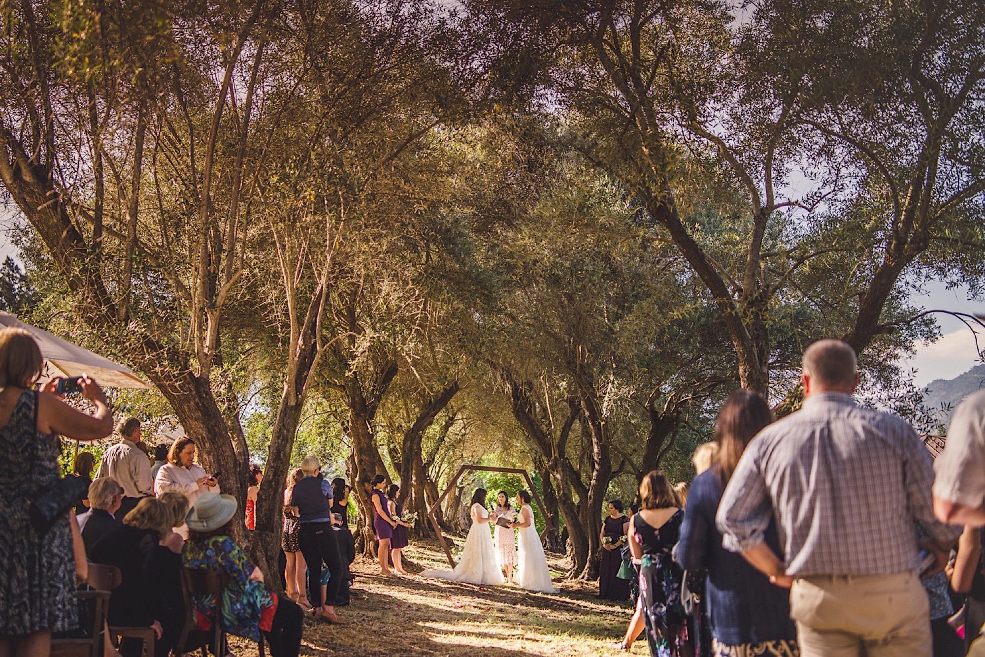 22_wedding_photos_Napa.jpg