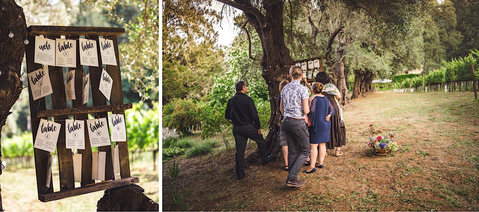 34_Napa_in_photographer_wedding.jpg