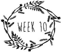 week10.png