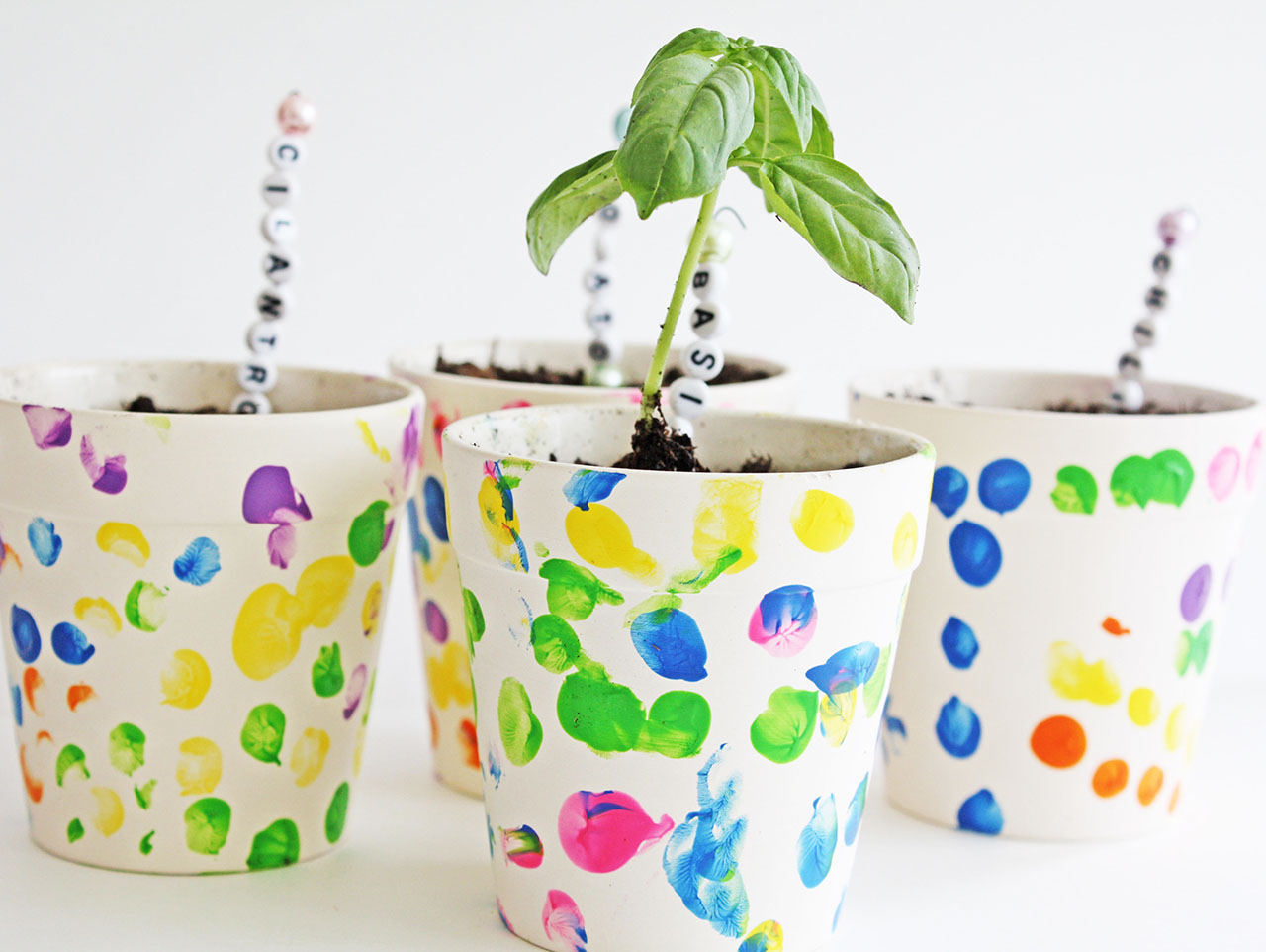 Finger Print Flower Pots