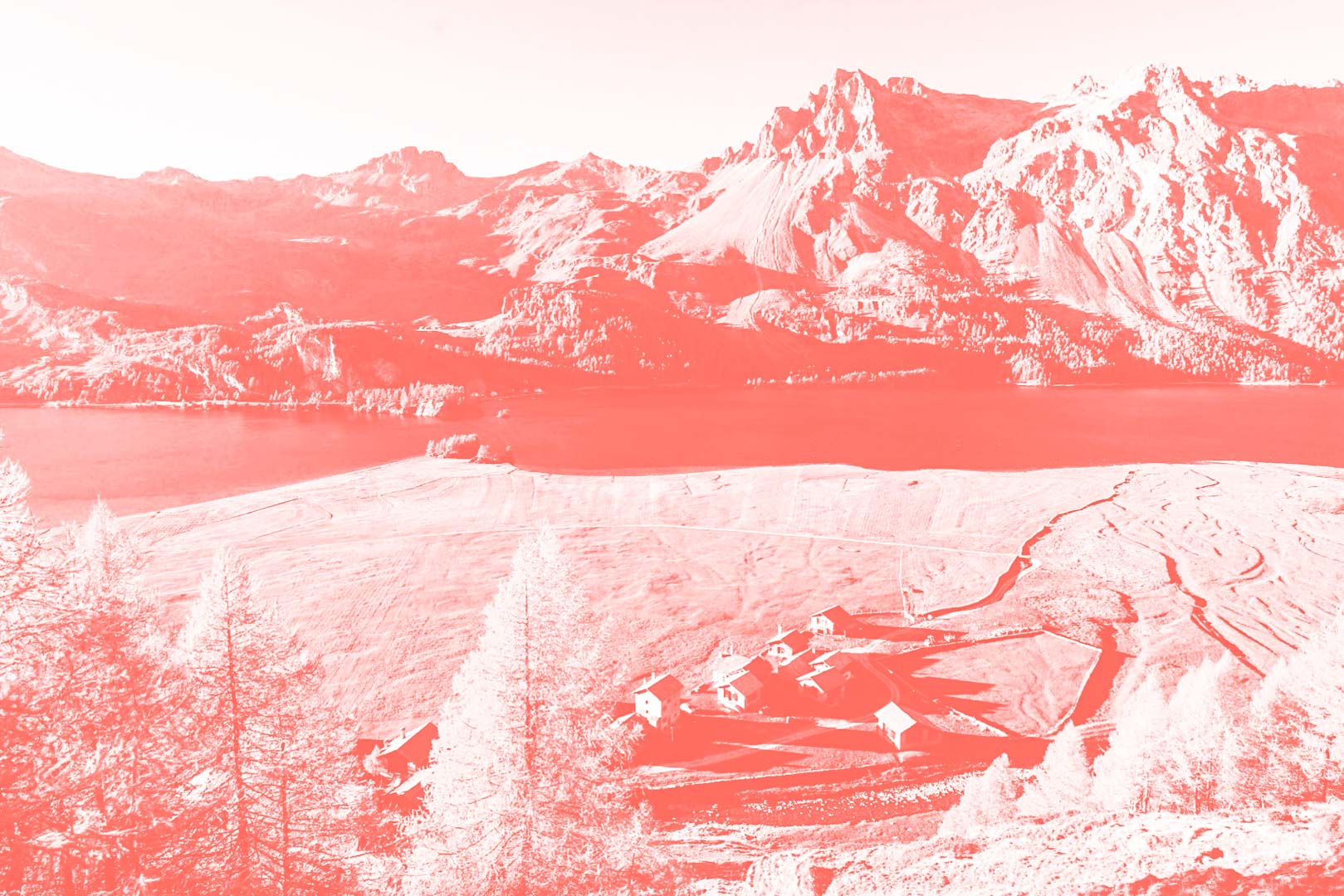 17122018-4Pantone16-1546-Isola.jpg