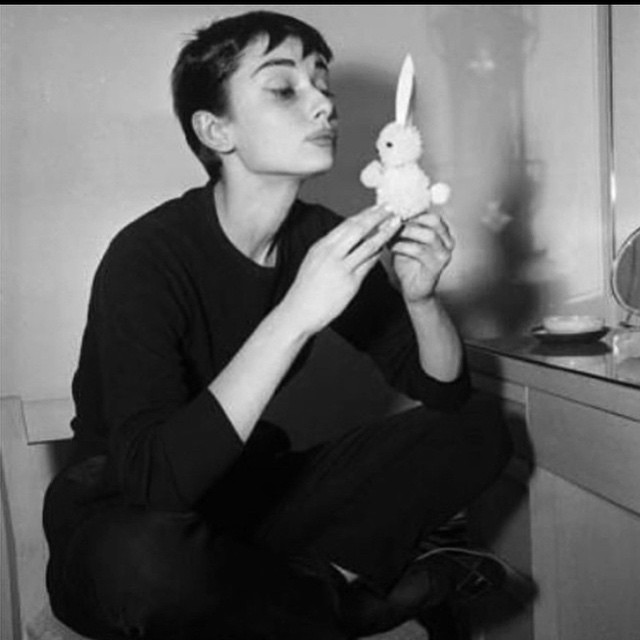 Happy Easter #bunnies #audreyhepburn #chocolate