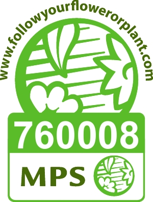 Vignet MPS-ABC EN-760008.jpg