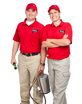 pest control managers Daniel and Marybeth