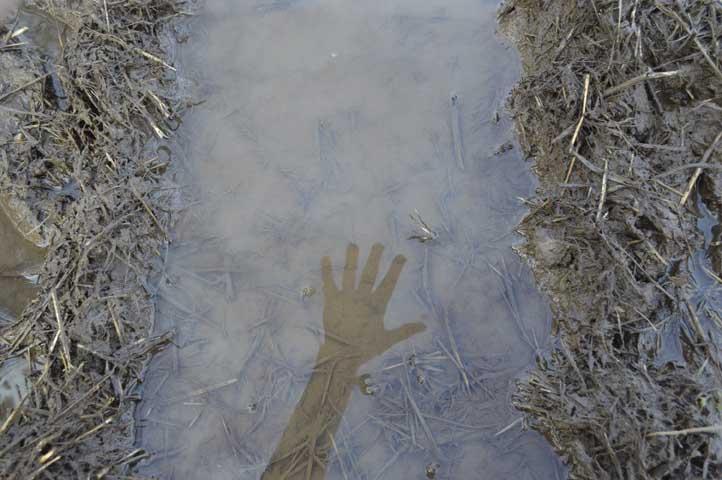 Water, Earth & Hand