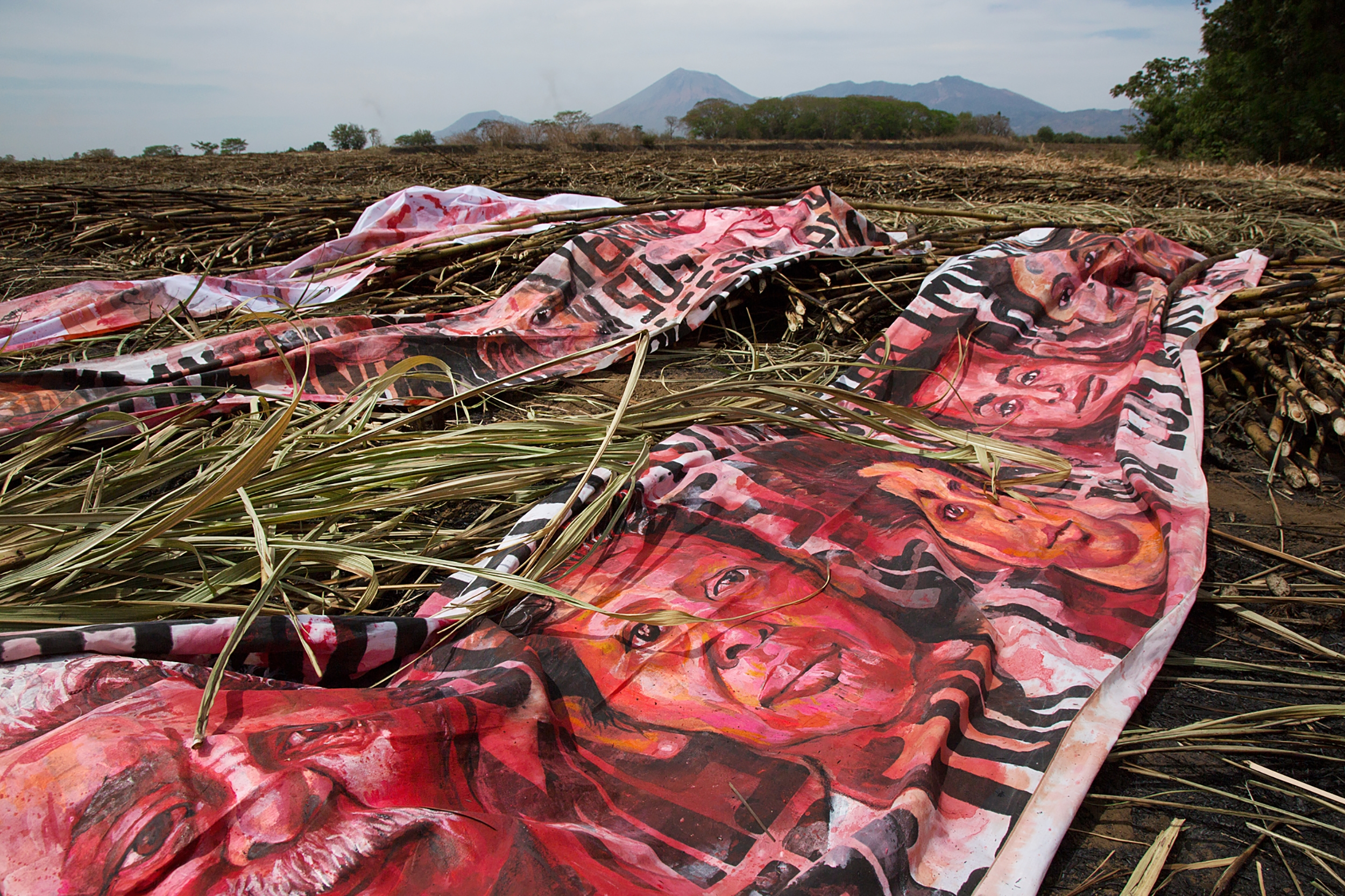 Empalagoso (Saccharine): The Chichigalpa Portrait Project, The Burnt Cane Installation. Photo courtesy of Tom Laffay.