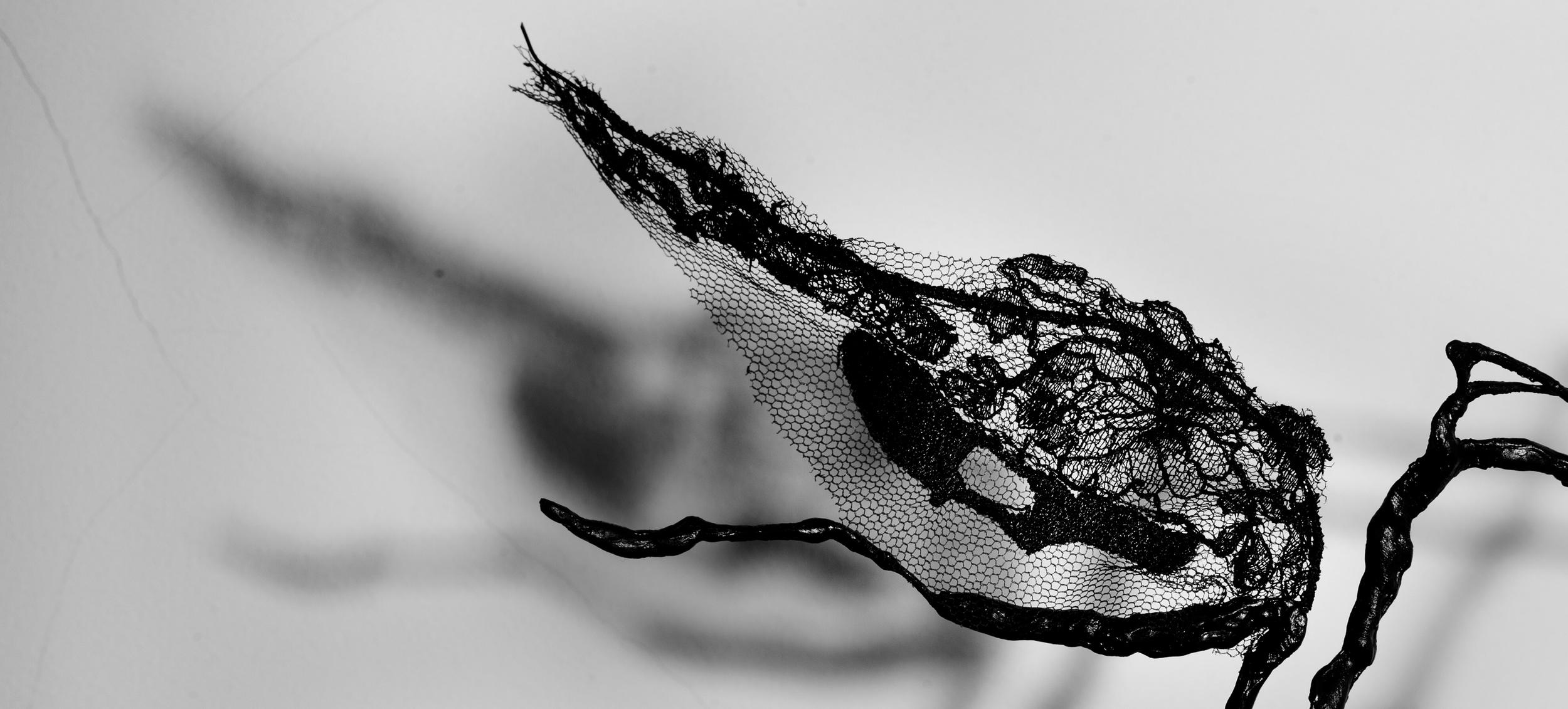 black night detail