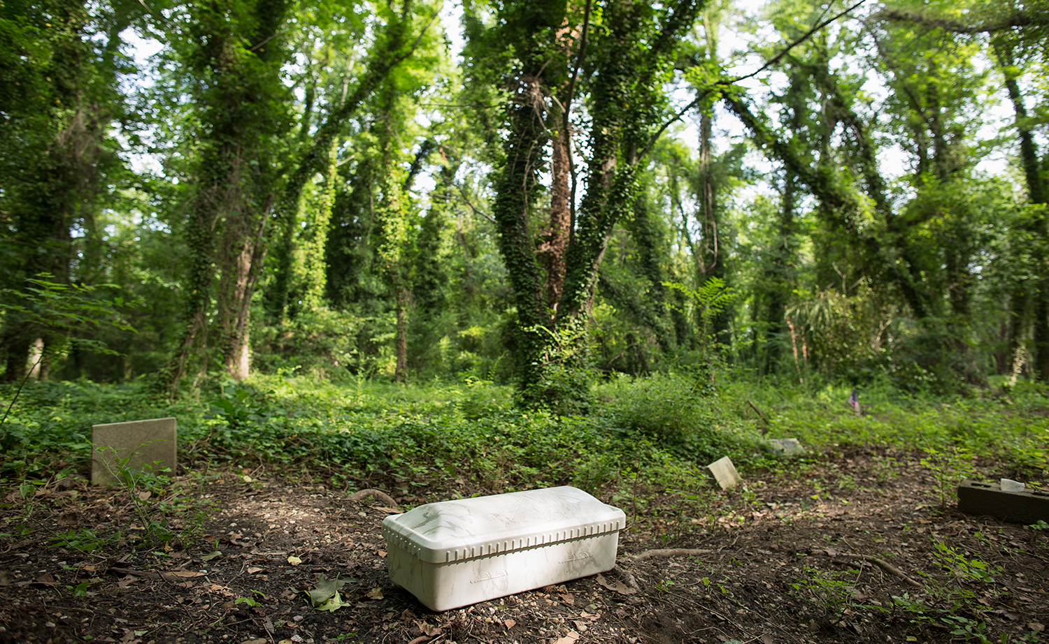 Container holding remains, believed to be those of a child, found above ground by volunteers as they cleared brush in a section of the historic, abandoned African-American cemetery.