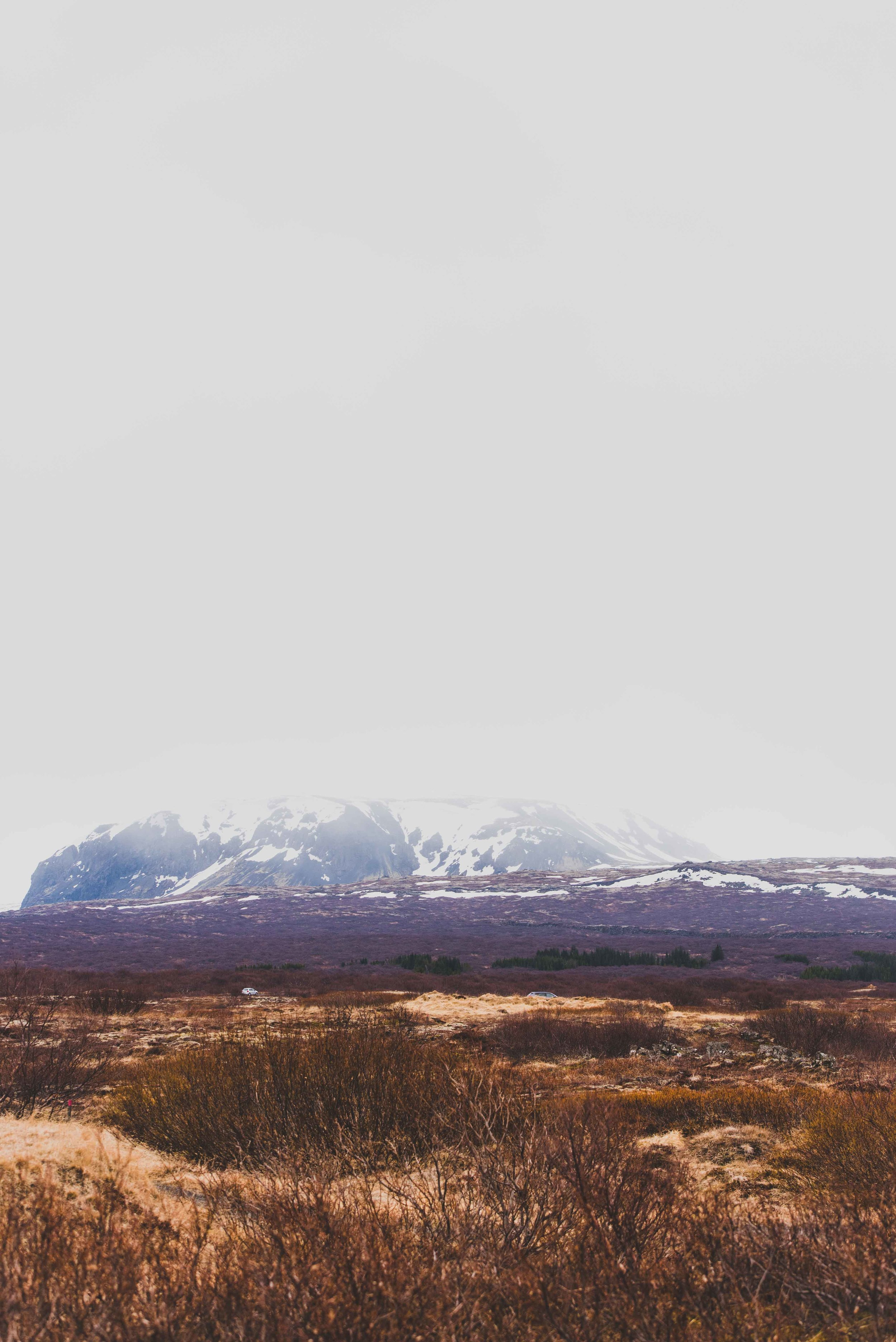 Joe Shutter Iceland Tectonic Plate Fissure Portrait.jpg