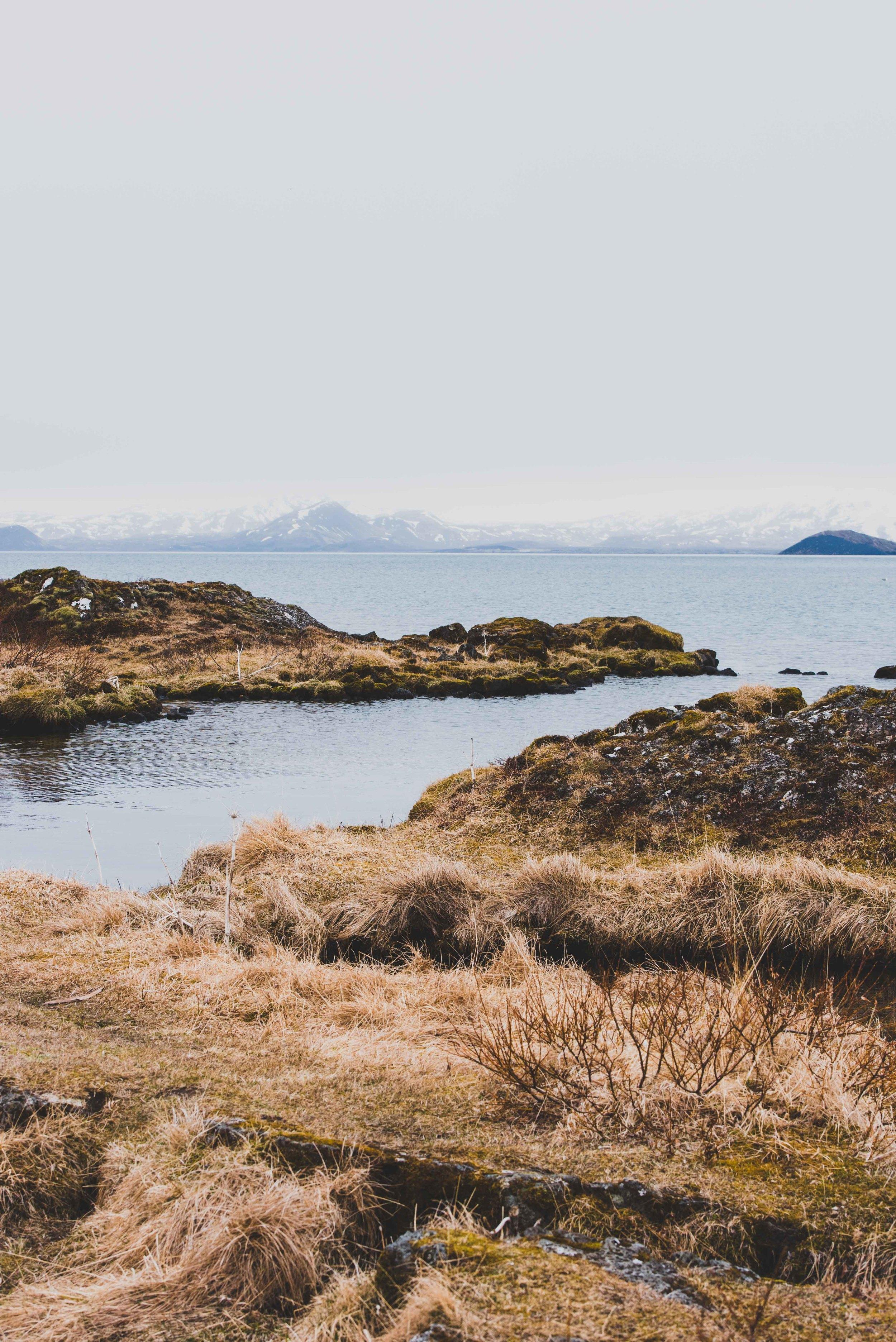 Joe Shutter Iceland Tectonic Plate Fissure Portrait-2.jpg