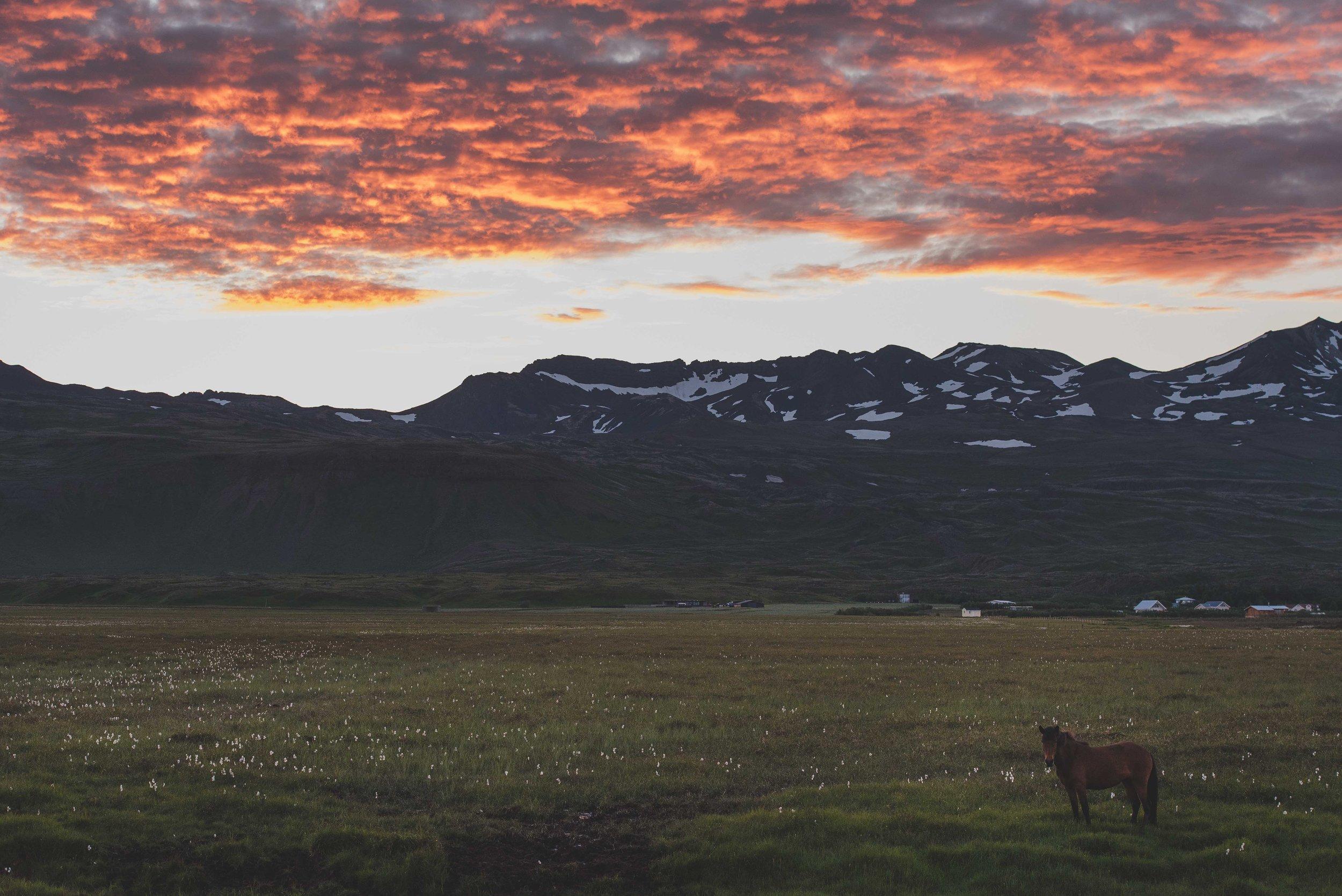 Joe Shutter Iceland Blogger Photographer_-33.jpg