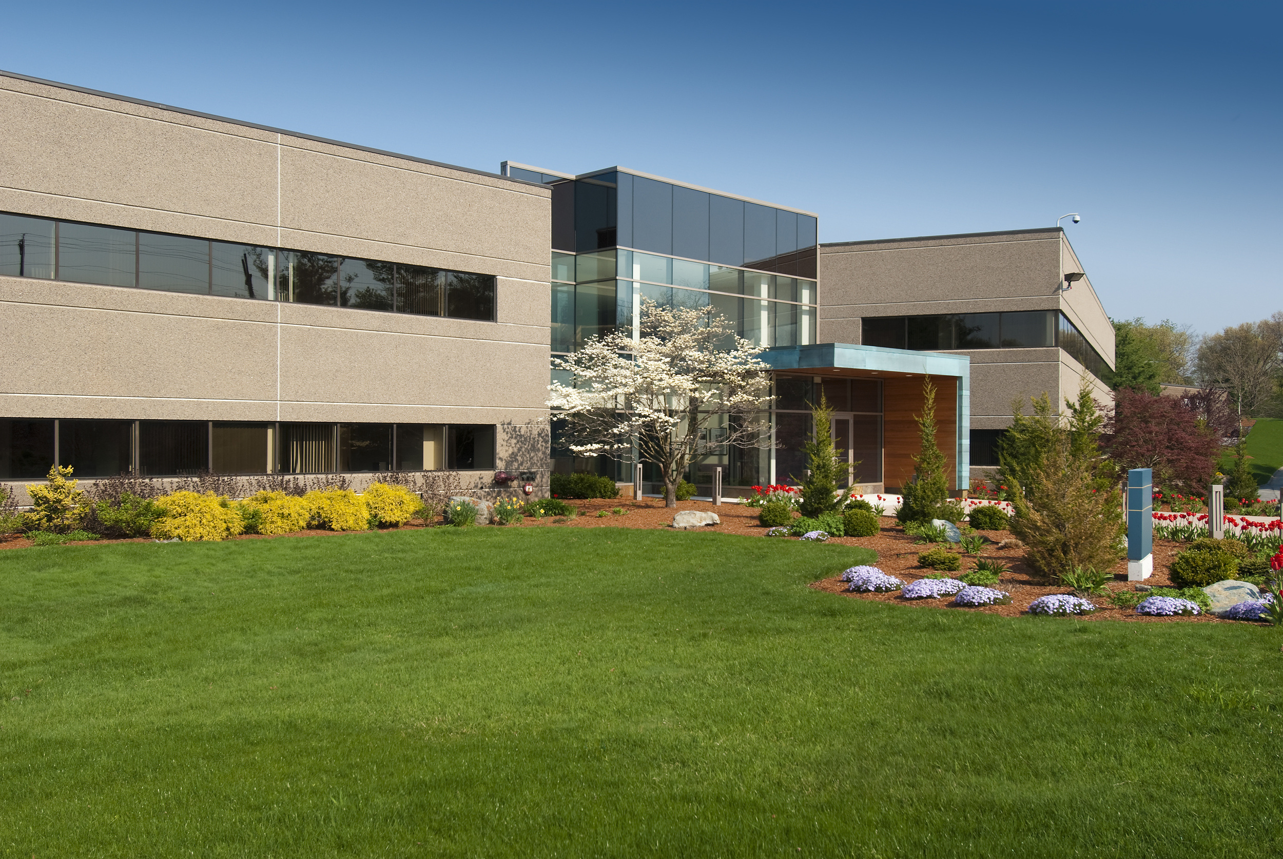 Commercial building landscaped