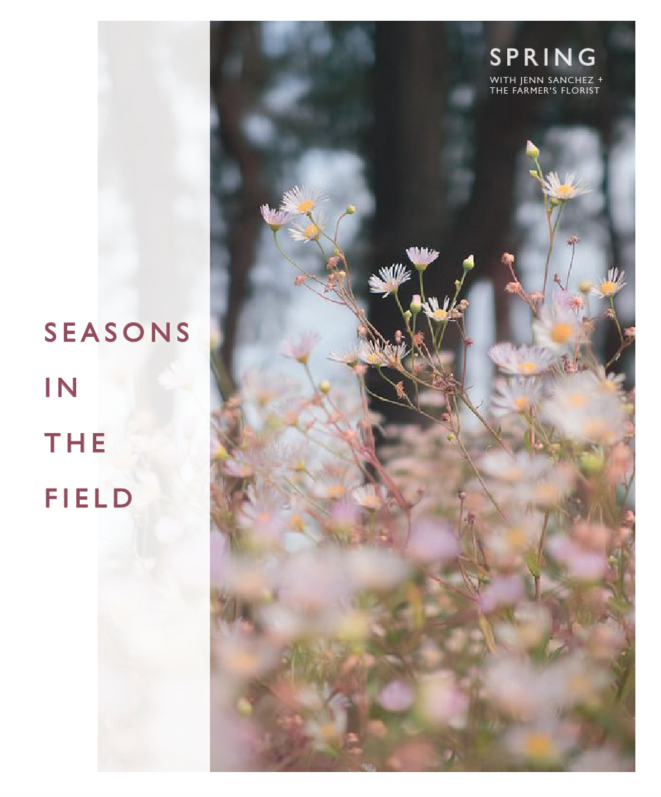 SeasonsInTheField1.png