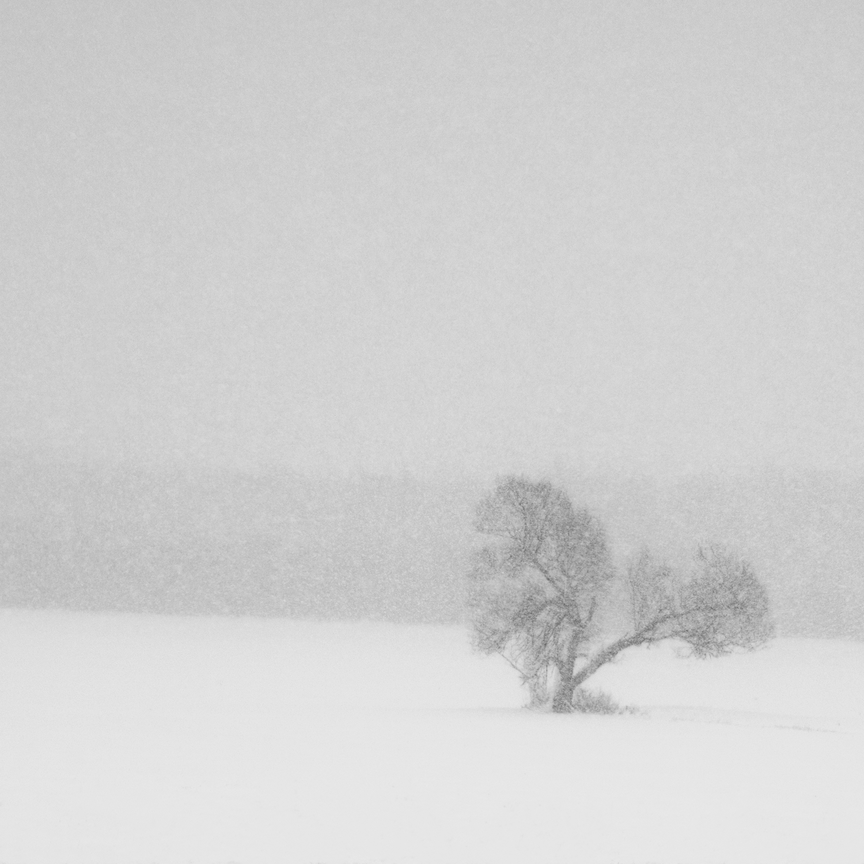 D'hivers et de vent