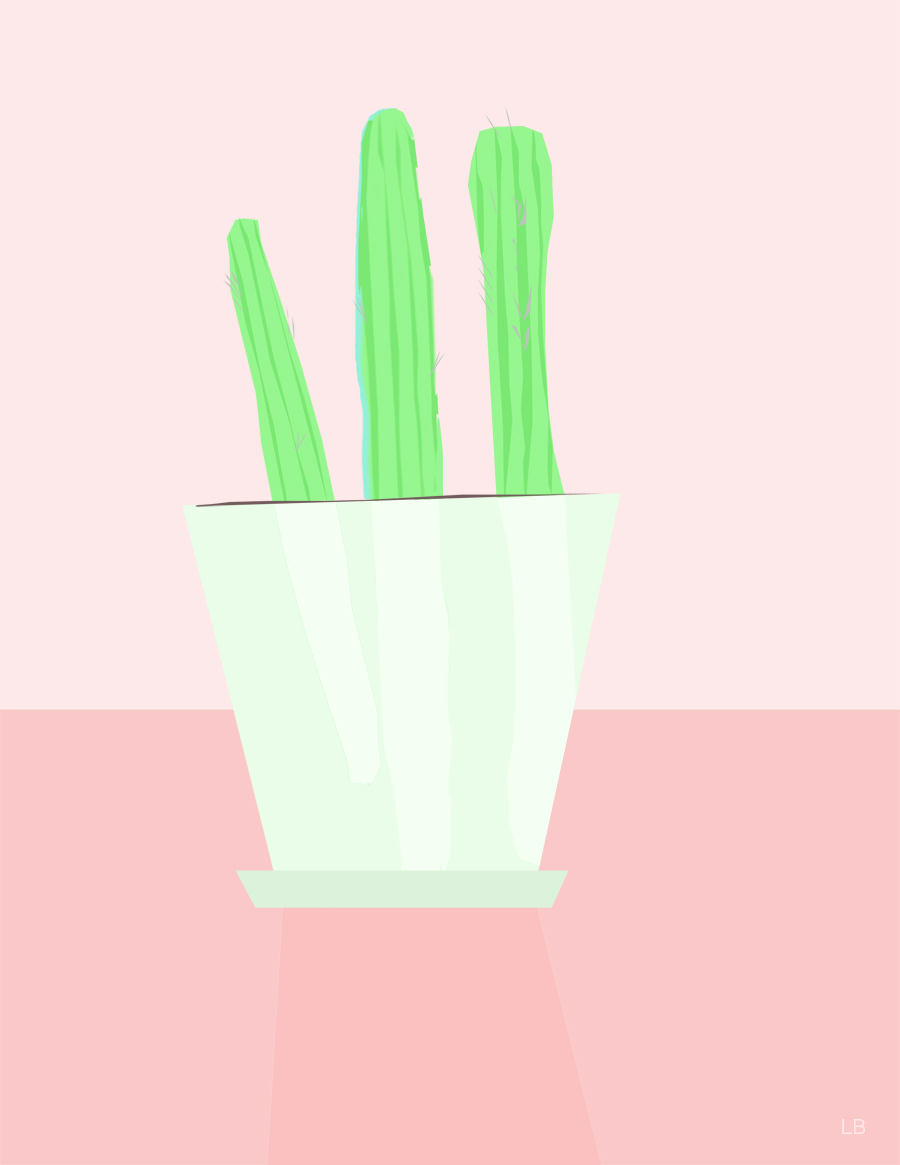 cacti_web.jpg