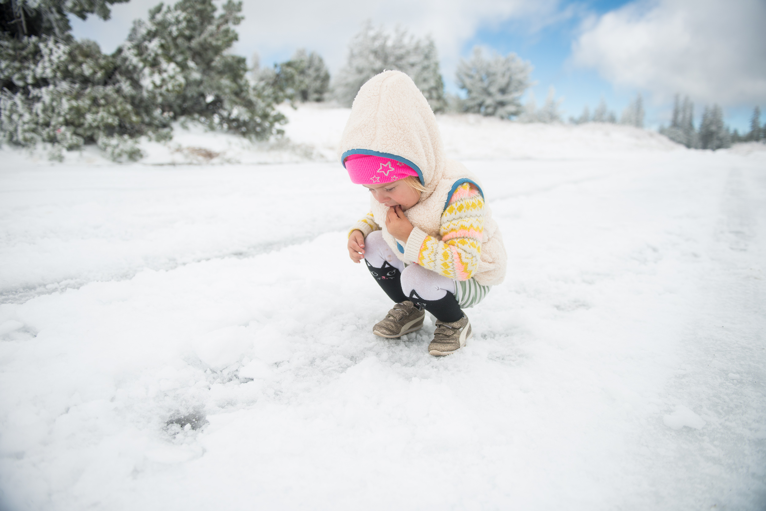 ila-in-mammoth-snow-2.jpg