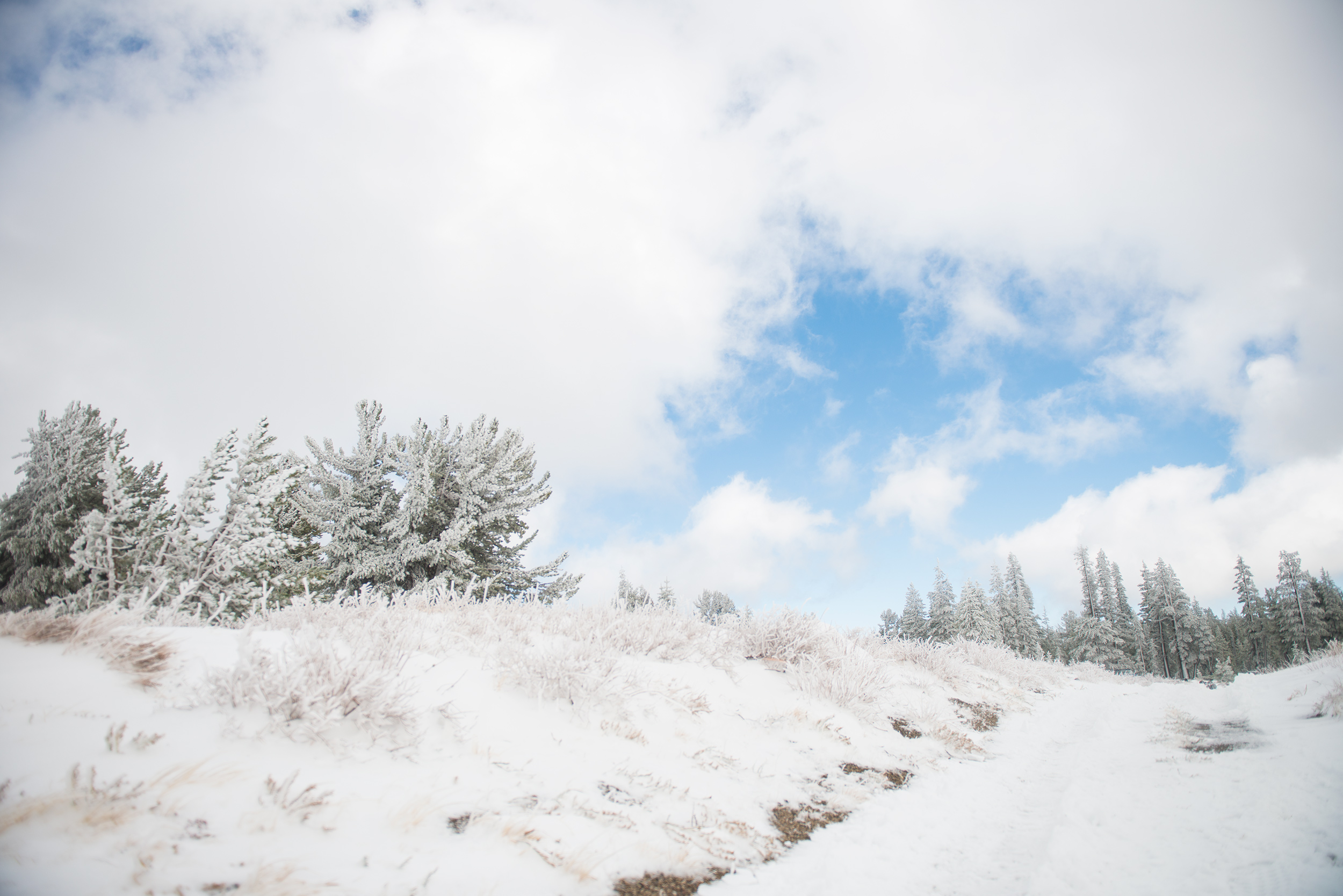 Mammoth-snow-2016.jpg