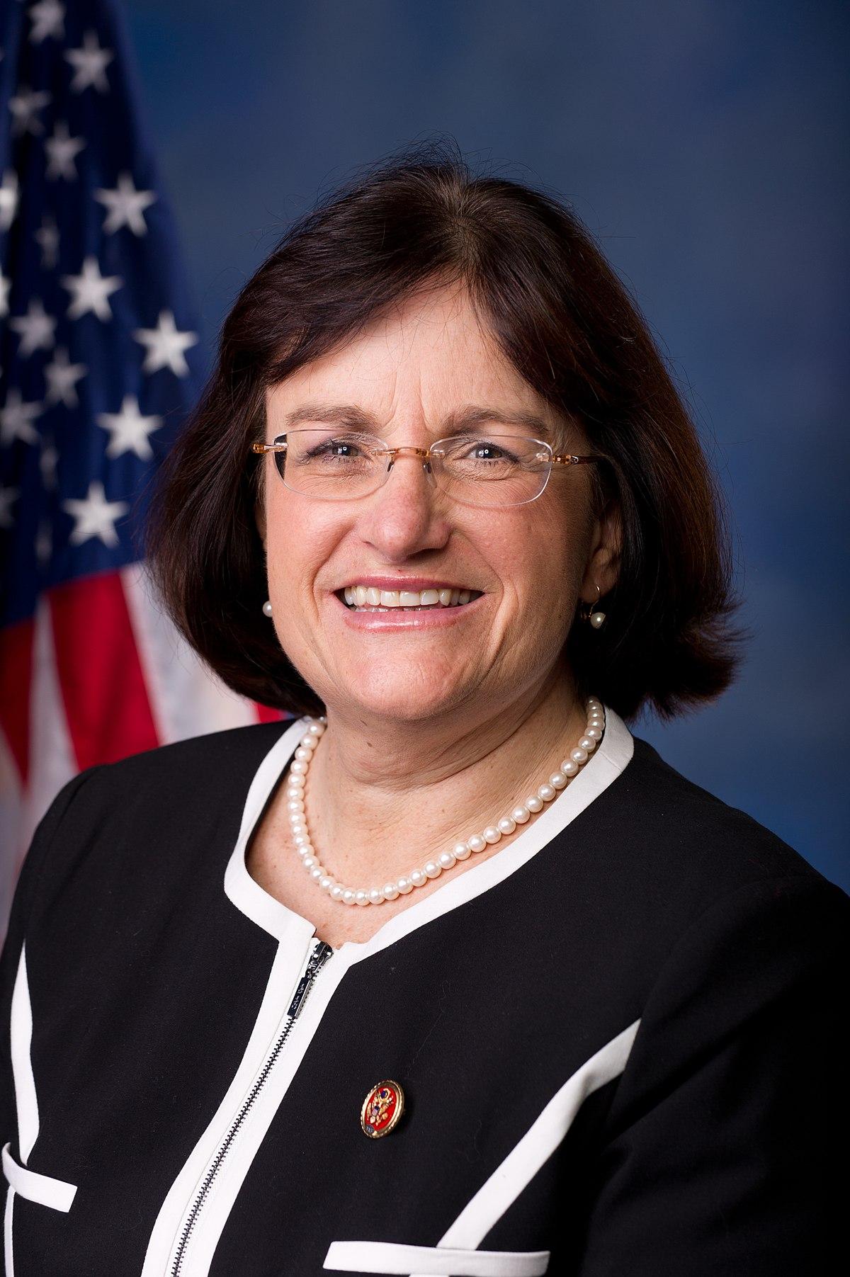 Rep. Annie Kuster (D-NH-2)