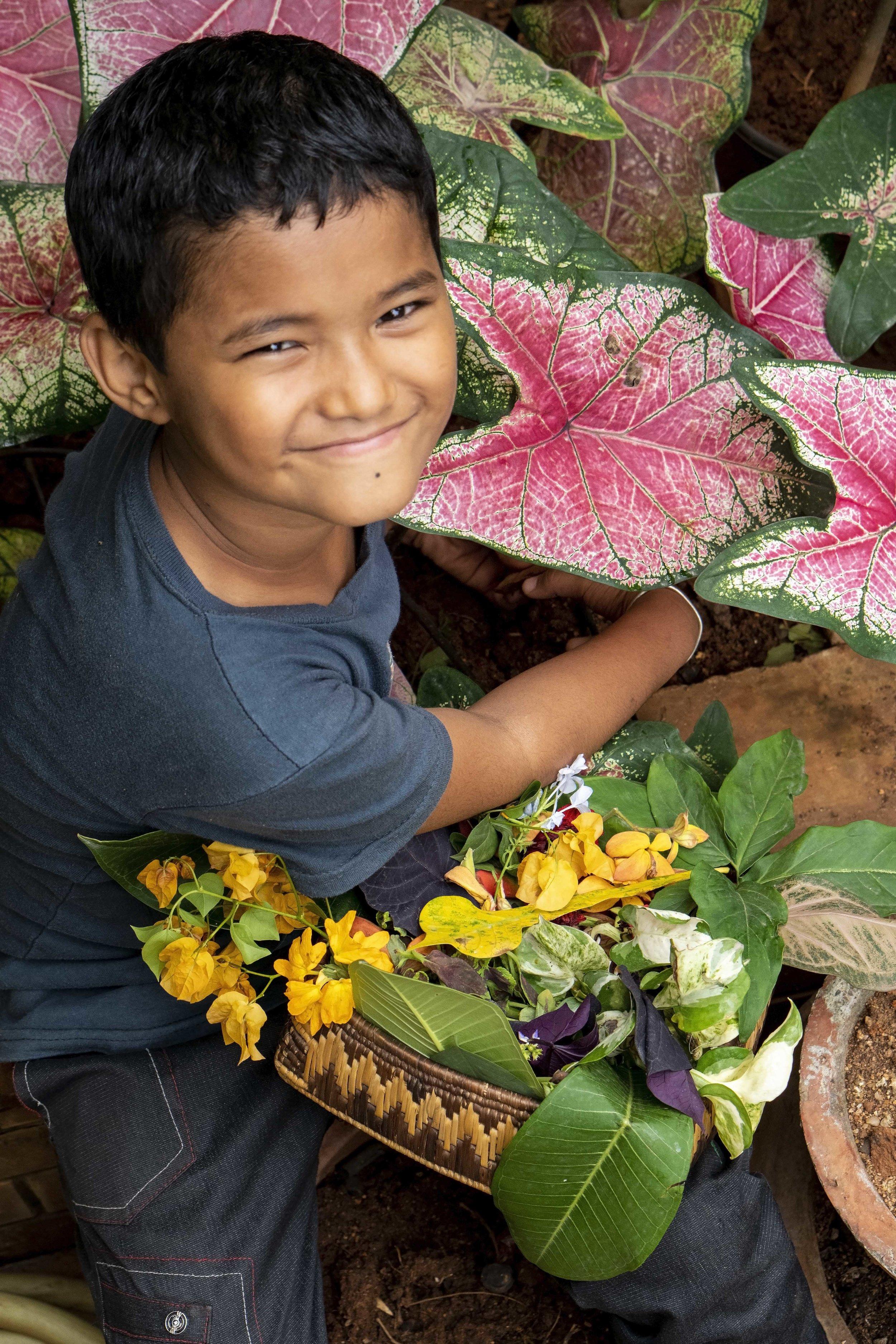 Boy Tends his Tropical Garden