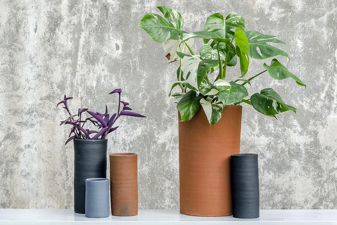TUBOS - Tubos, una producción que reafirma la elegancia de las alturas, cuenta con maceteros de 9 a 50 centímetros de alto, refugio perfecto para las raíces de cactus, árboles frutales y palmeras.