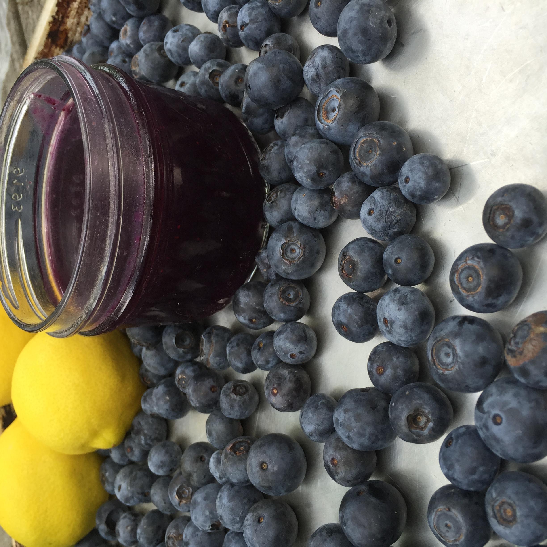 blueberrycurd