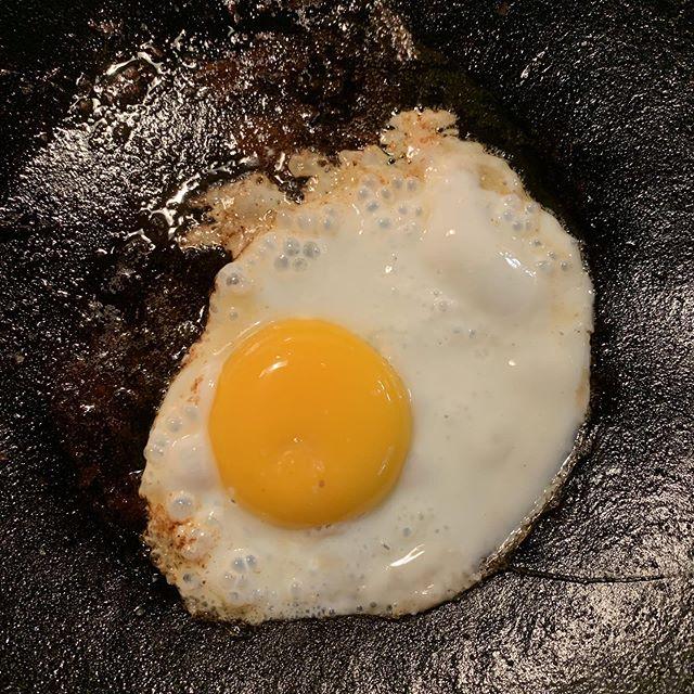 Ellen Degeneroost makes huge yolks. Too bad she's a meanie. #backyardchickens #growyourfood