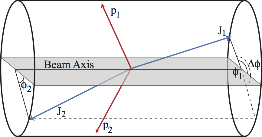 """Cartoon sketch of a vector-boson fusion event, as seen in a detector like ATLAS or CMS (the cylinder). Two jets (blue) appear in the """"forward"""" regions of the detector, while invisible dark matter (red) is produced in the """"central"""" part of the detector. Sketch taken from my paper 1008.5151, written with Michael Ramsey-Musolf."""