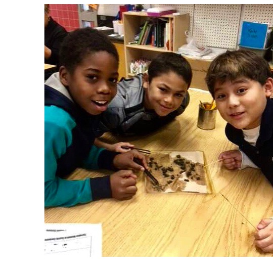 Science - Science is everywhere and our students are naturally curious, which makes them natural scientists. A strong science program helps them make sense of the physical world around them, it can explain the how and why things work. In our science lab, students can develop an understanding of the scientific process.