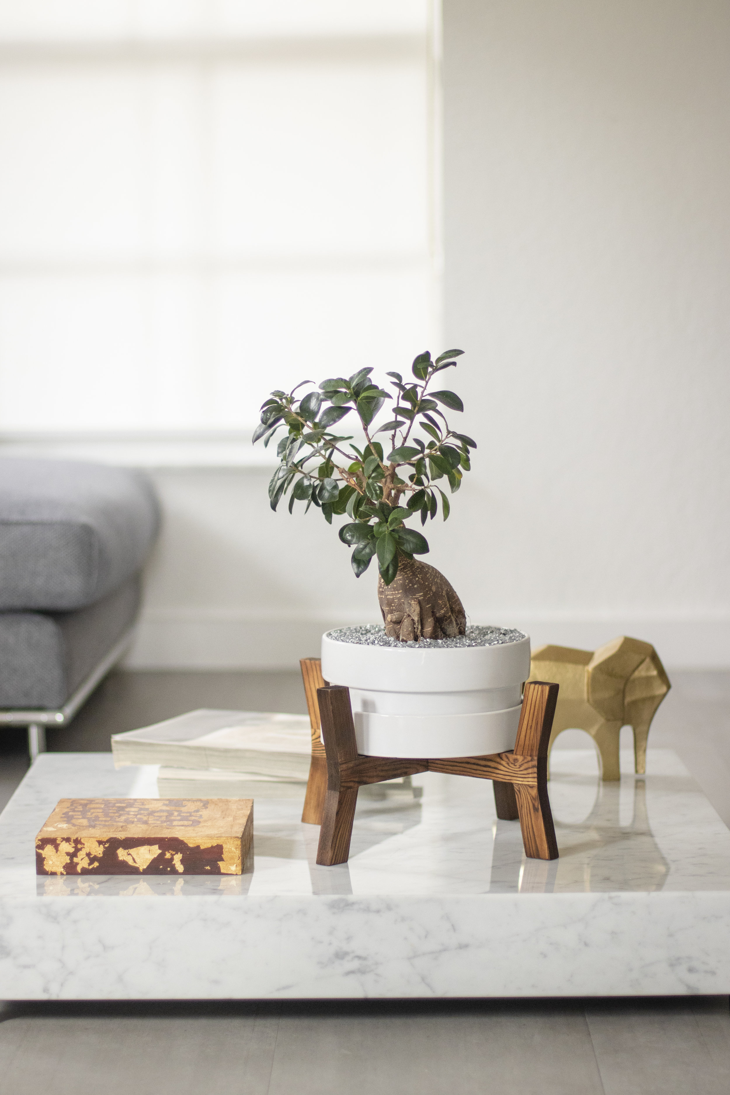 Product photography 1