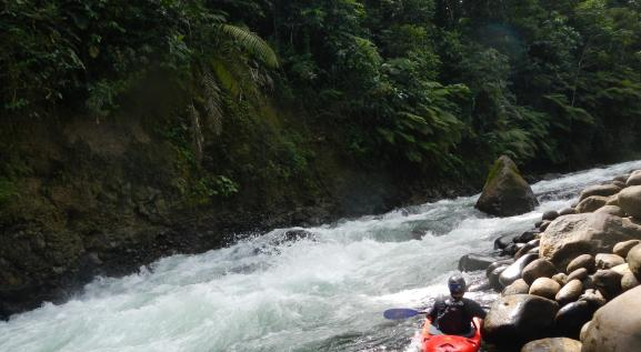 Sarapiqui River, class III_0.jpg