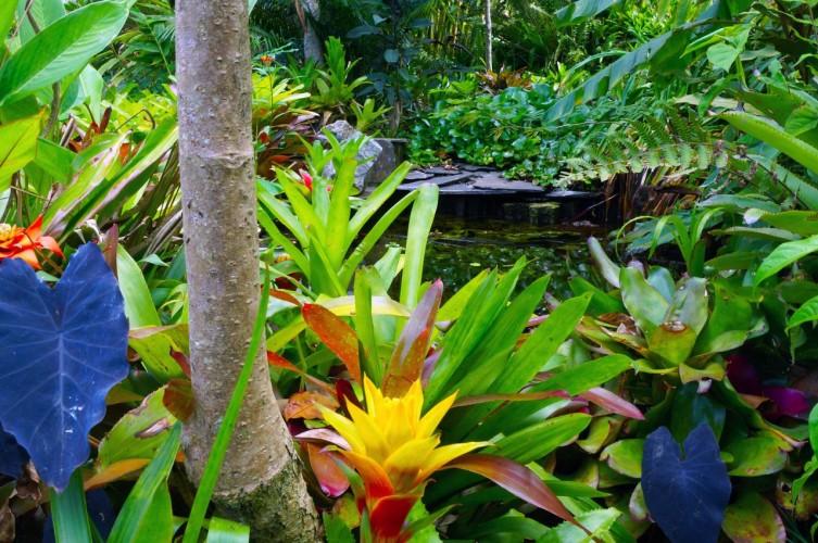 galeria_jardines_flores_colores-c72be7004b.jpeg
